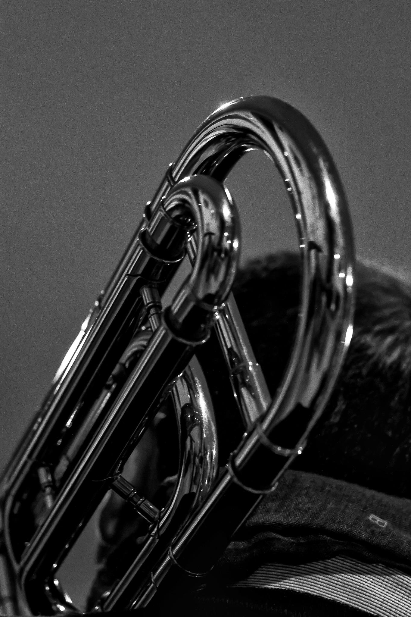 Trombone by Antonello Putignani