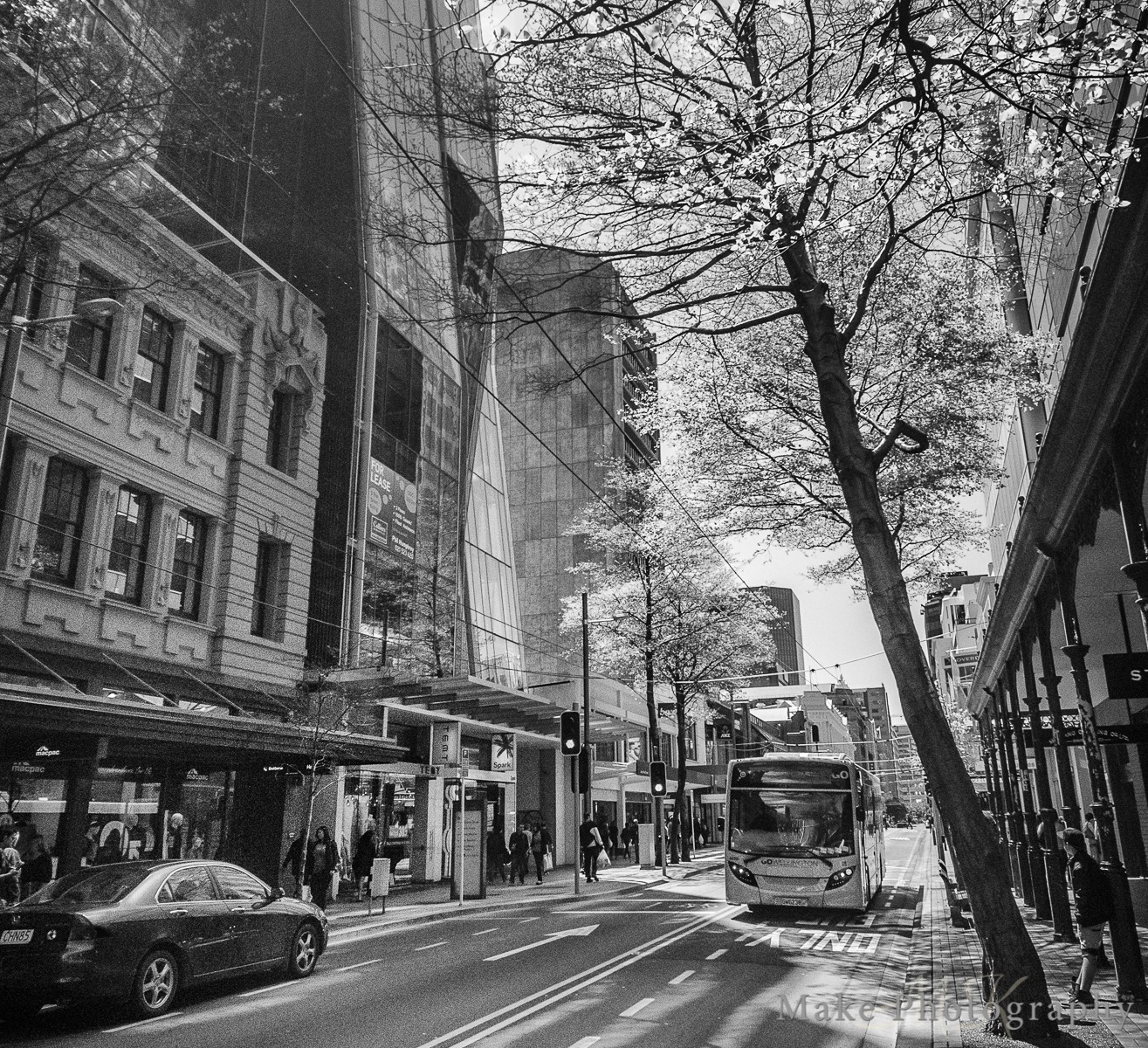 Wellington In Spring by MikeGannaway