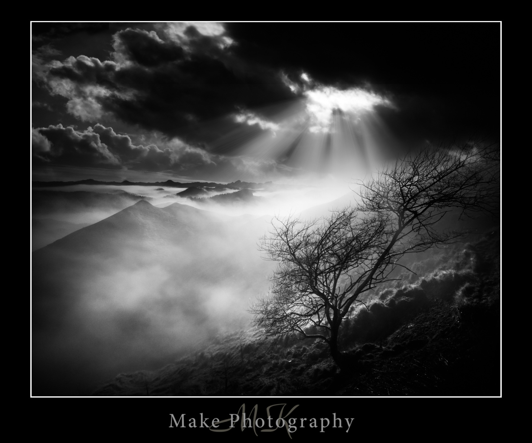 Naked Tree by MikeGannaway