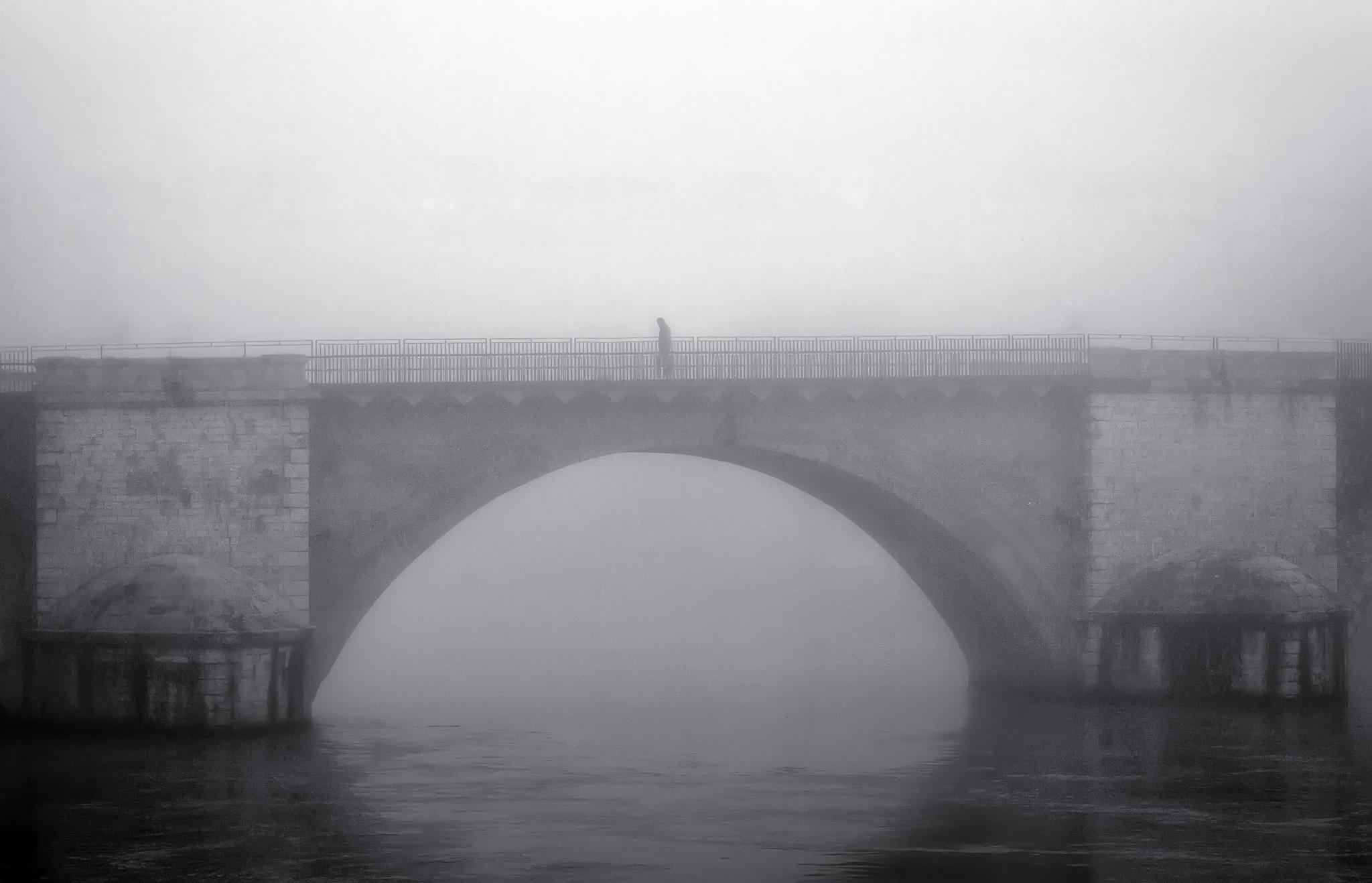 Mist by Victor Chevalier
