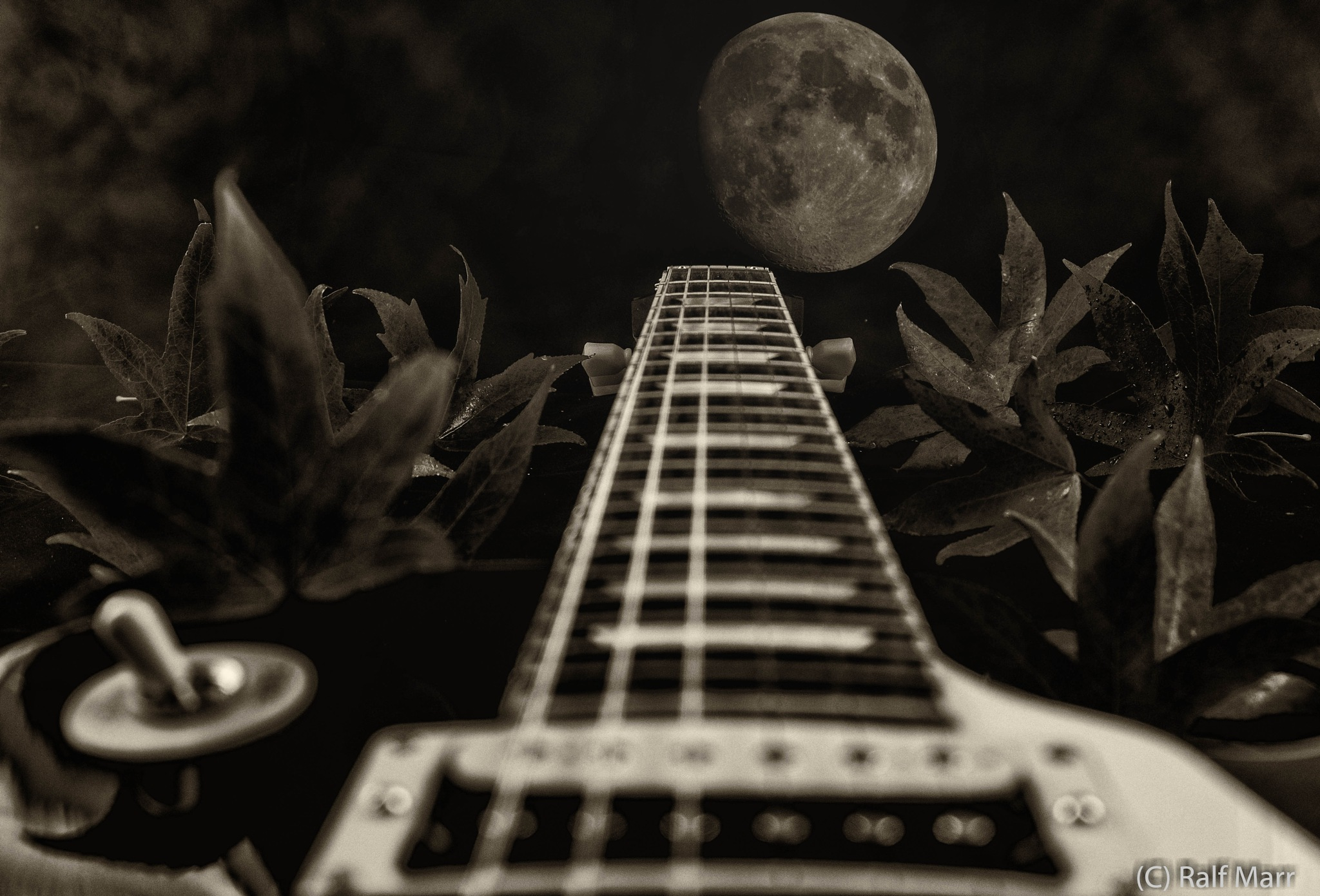 Midnight Blues... by Ralf Marr