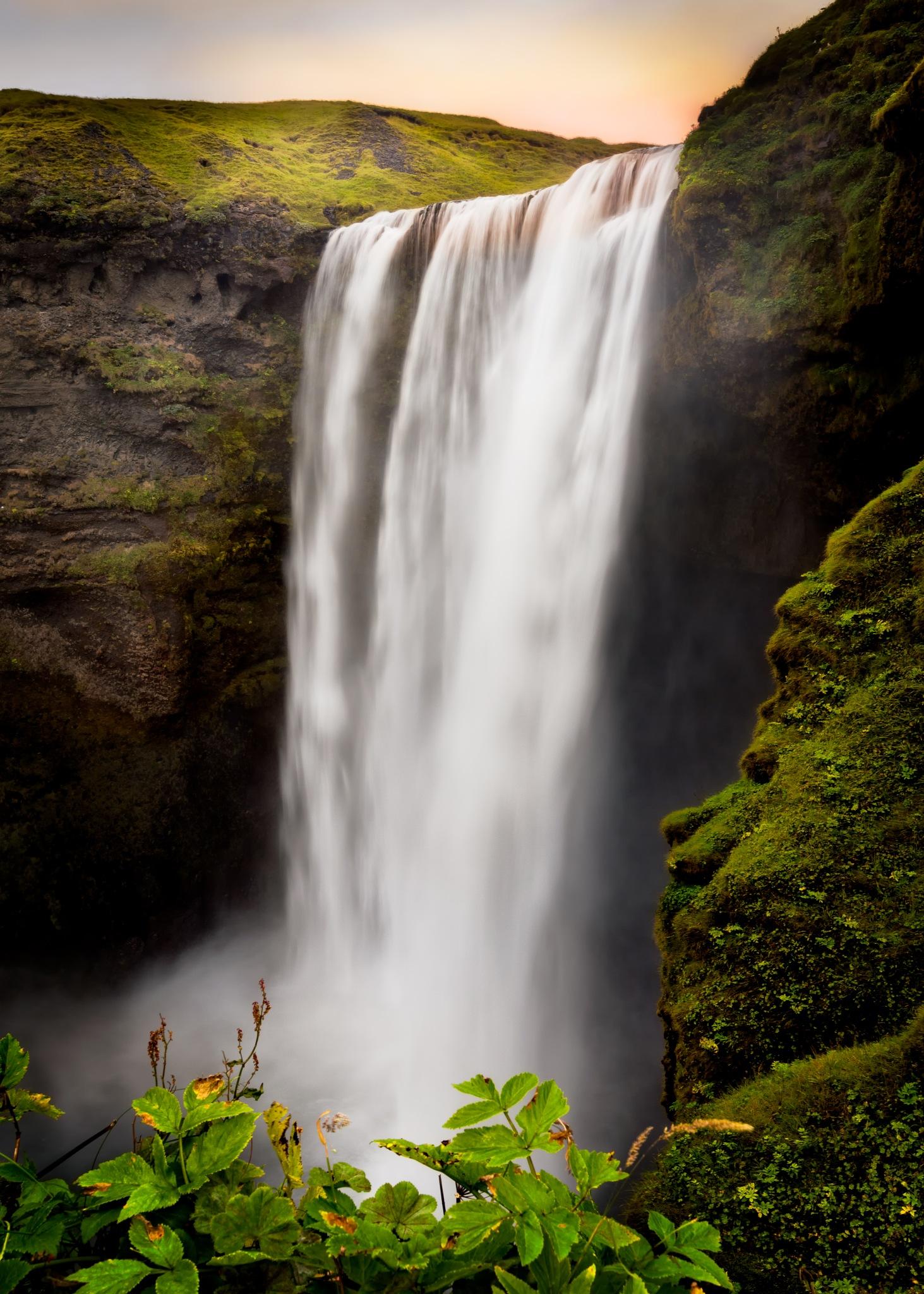 Verdant falls by Rebecca Ramaley