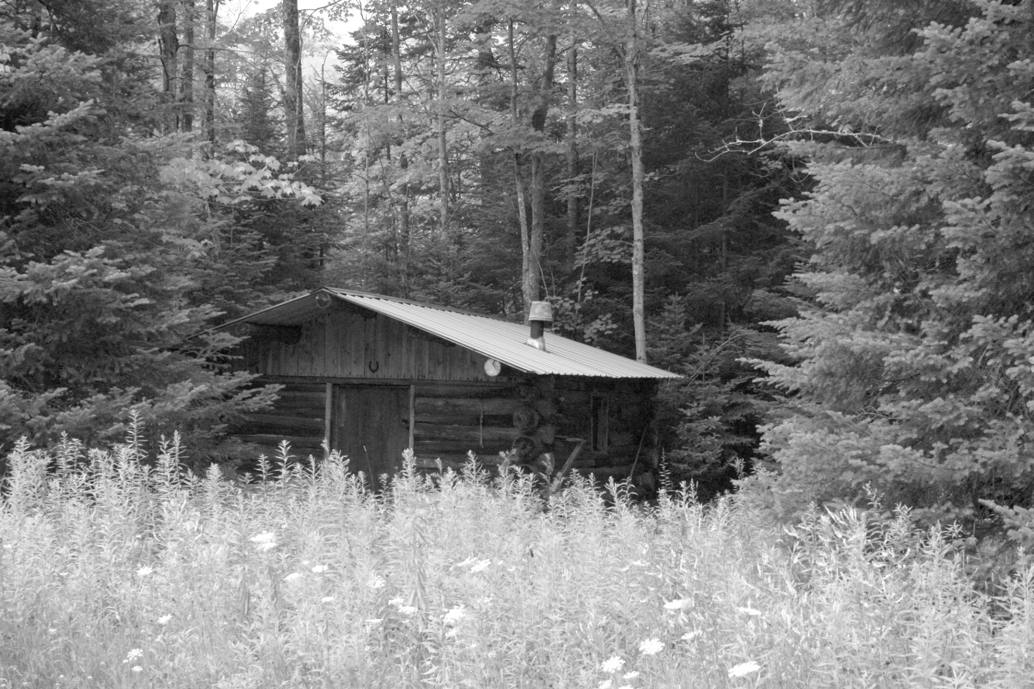 The cabin in the woods by Joe LaFata  Photography  Great north Photos