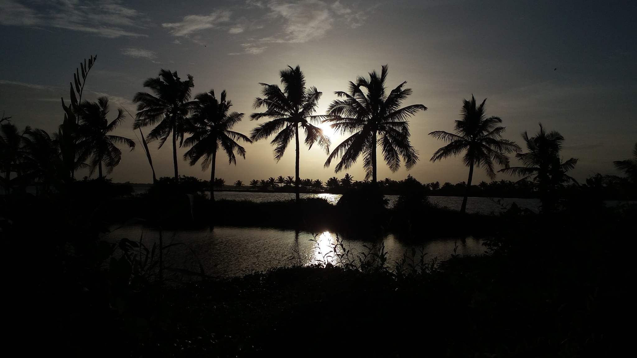 kerala eve by Areecka mobile uplods