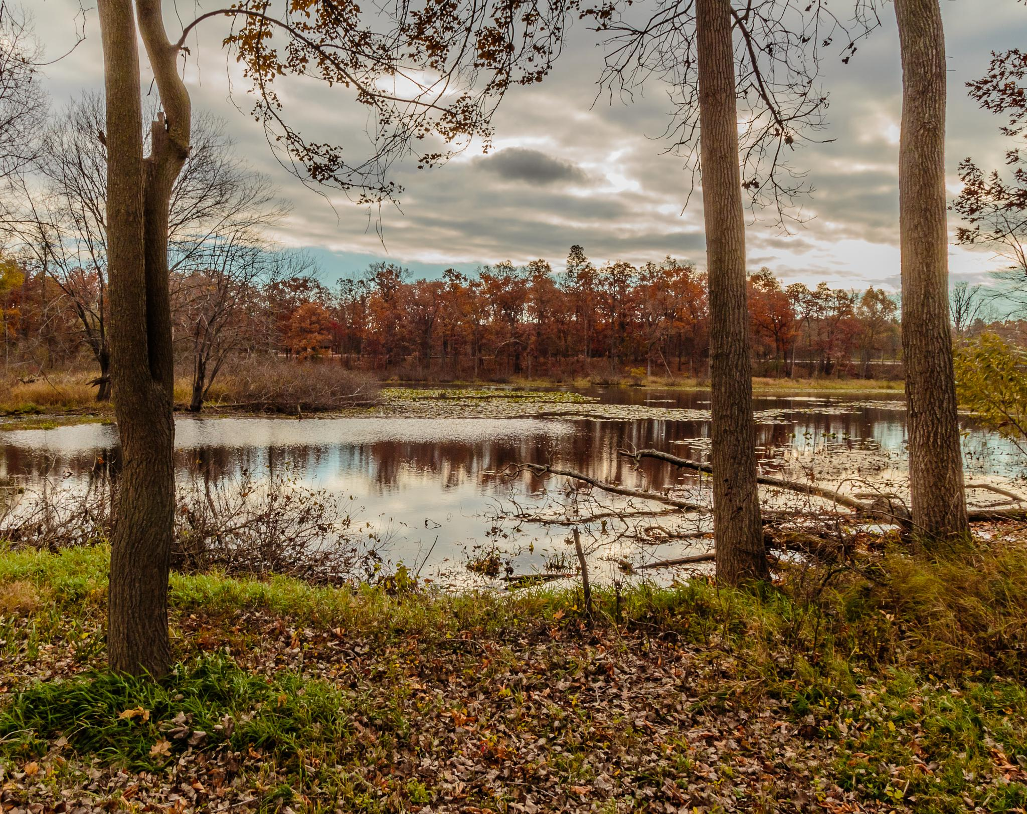 Photo in Landscape #landscape #fall colors #autumn #leaves #fall