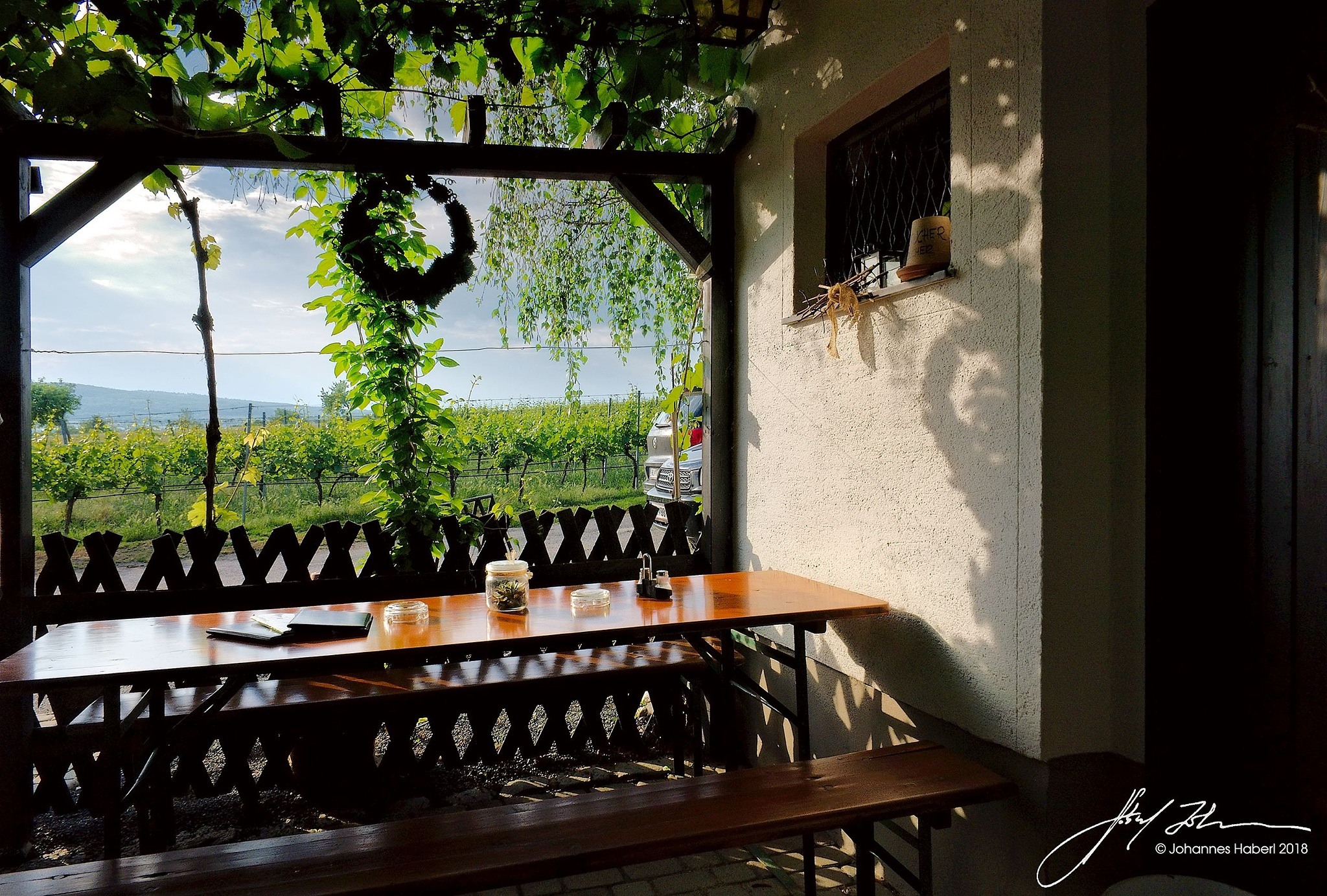 wine tavern with view to the vineyard  by Johannes Haberl