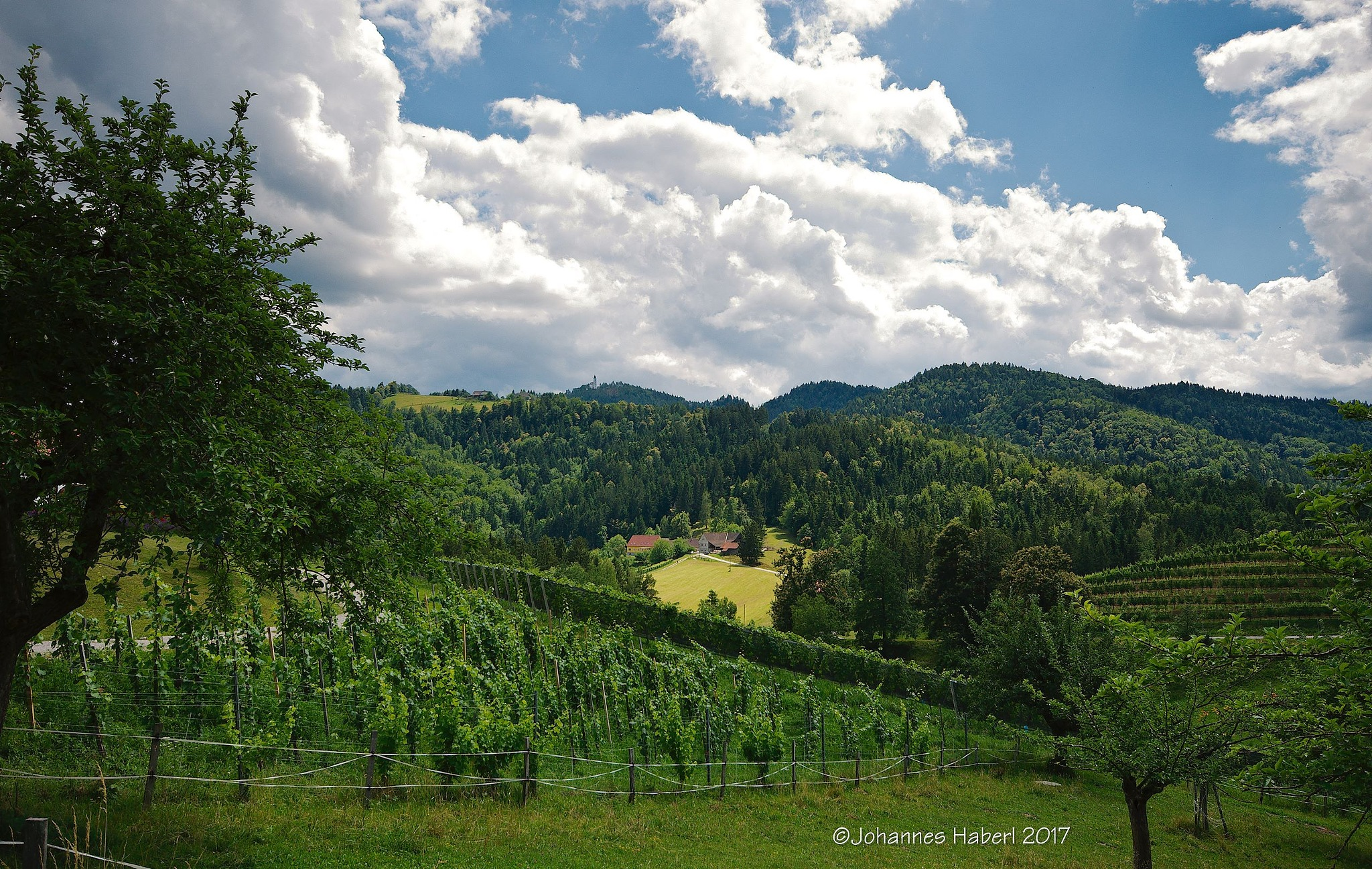 """landscape at Oberguess - view to another """"Buschenschank"""" by Johannes Haberl"""