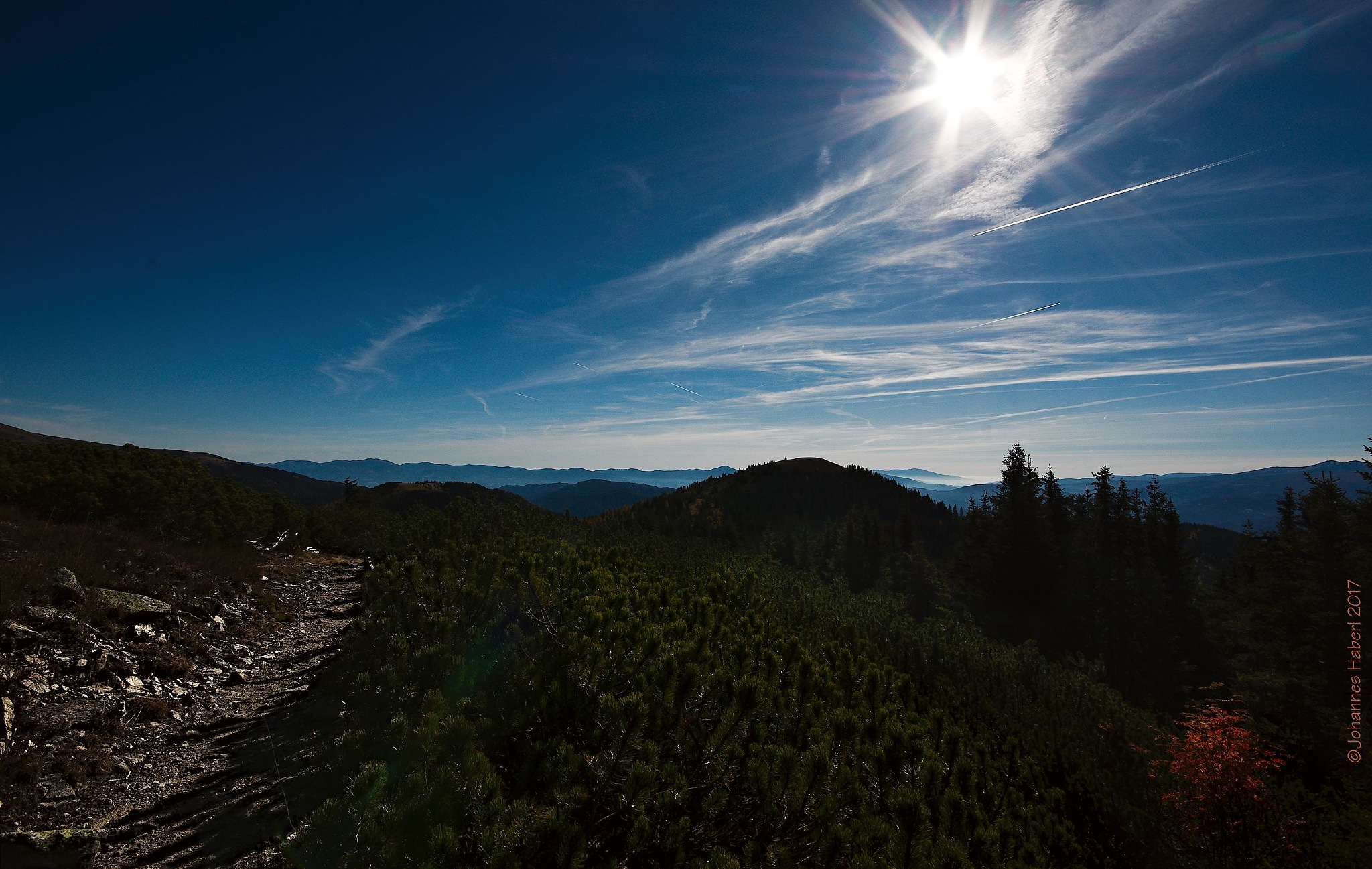 path - deep green mountain pine - forest, some red - blue sky / high contrast  by Johannes Haberl