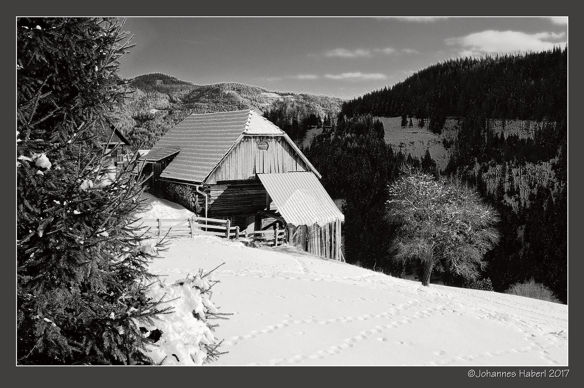 Salchau, barn / B&W TechPan, high contrast by Johannes Haberl