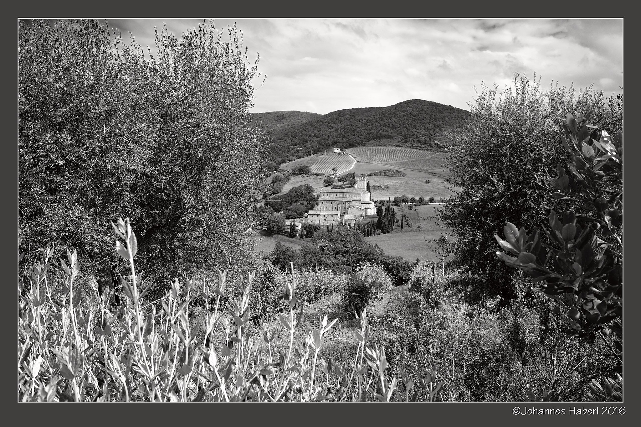 San Antimo - view from Castelnuovo dell'Abate by Johannes Haberl