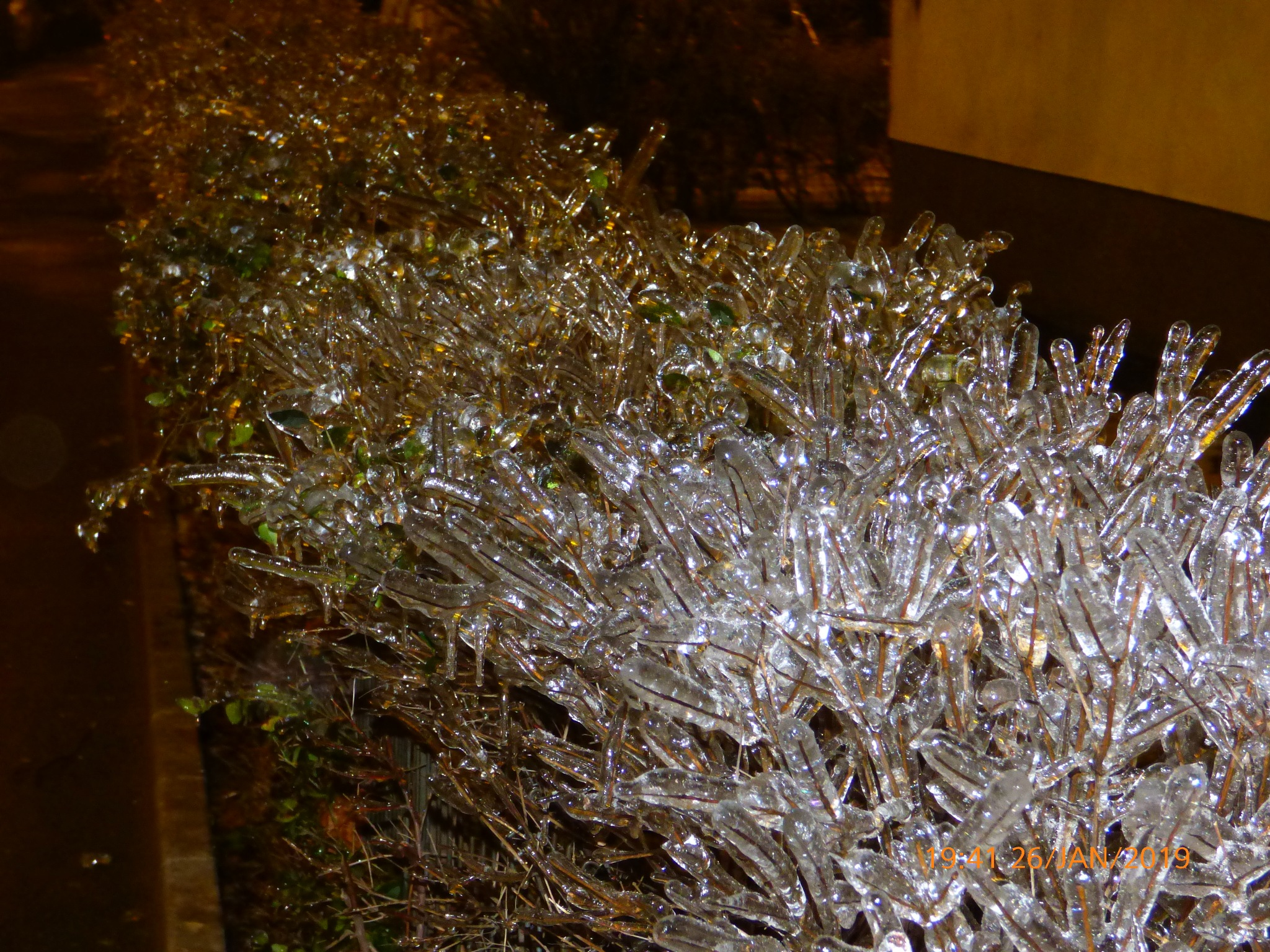 Icy dreams by Silviu Mustata