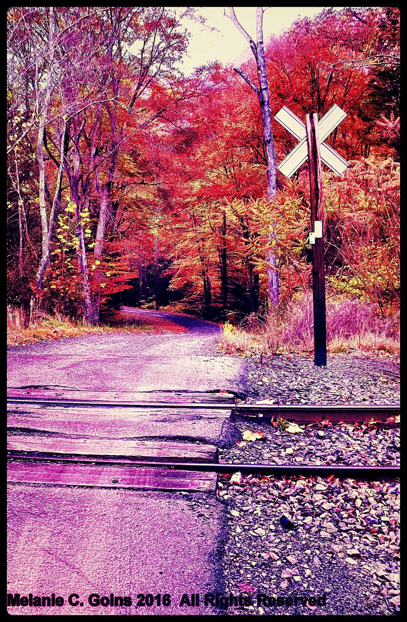 Train Crossing by Melanie Goins