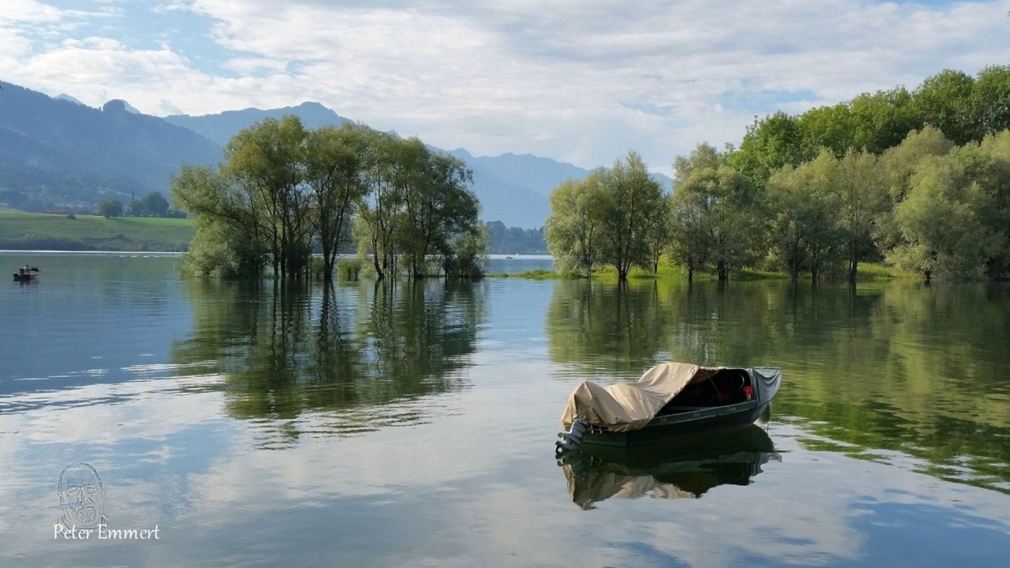 Lac de la Gruyère, one by Peter Emmert