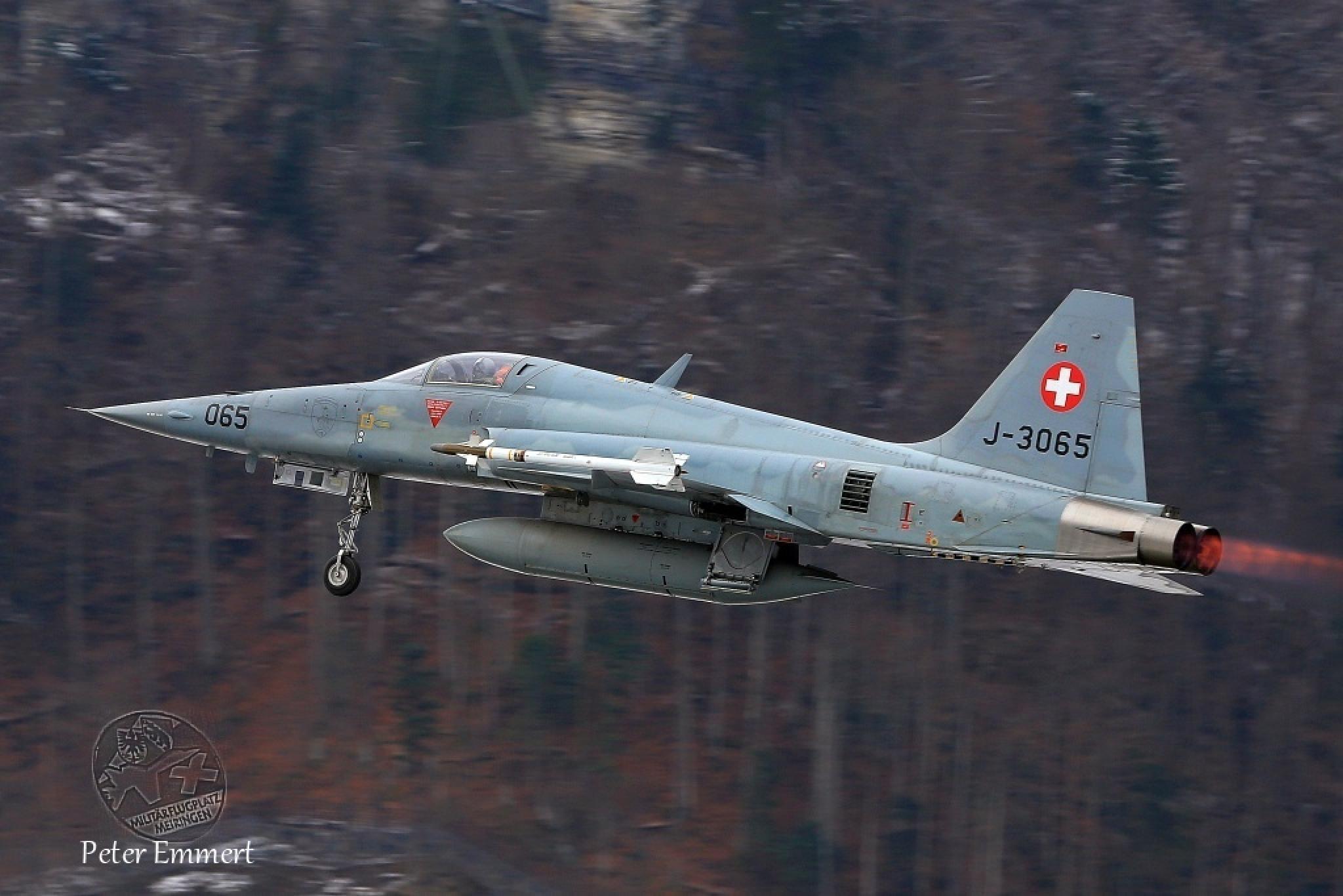 Northrop F-5E Tiger II J-3065 by Peter Emmert