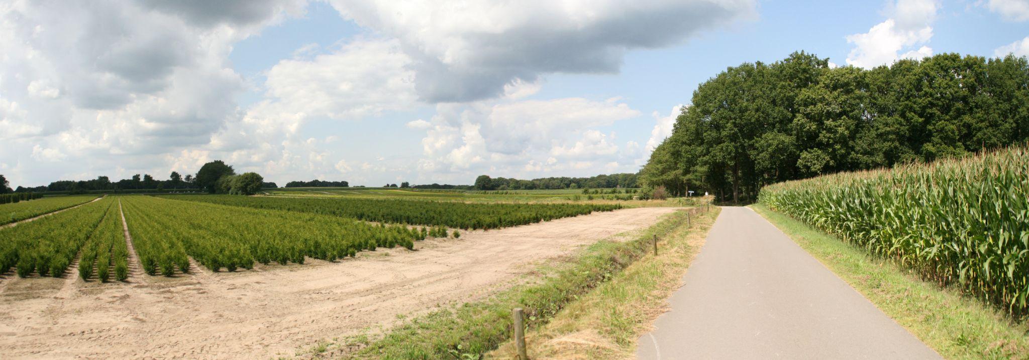Dutch Scenery by Kaje