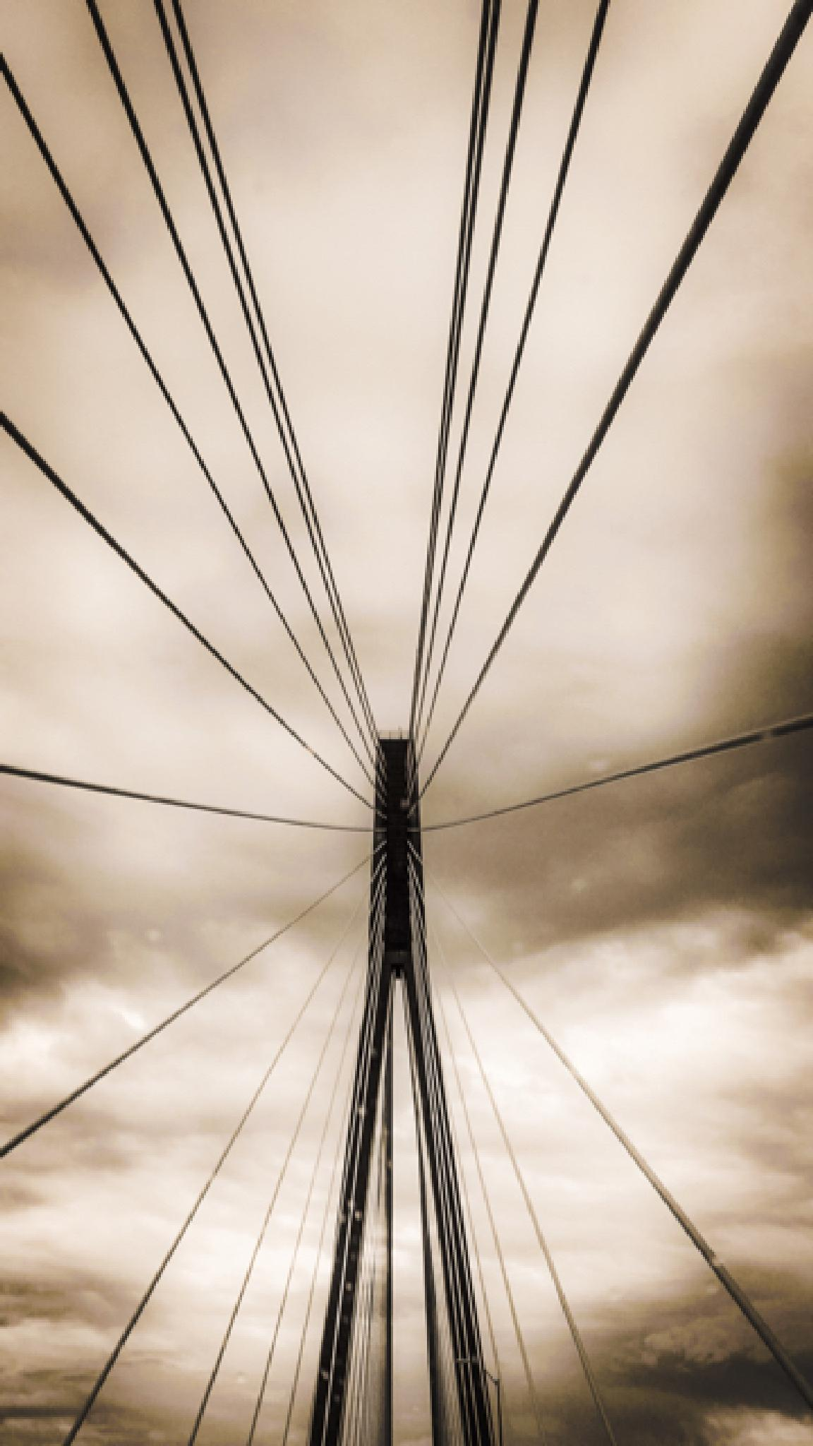 looking up on the 31st Bridge in Huntington WV by Joshua Murdock -     Murdock Photography