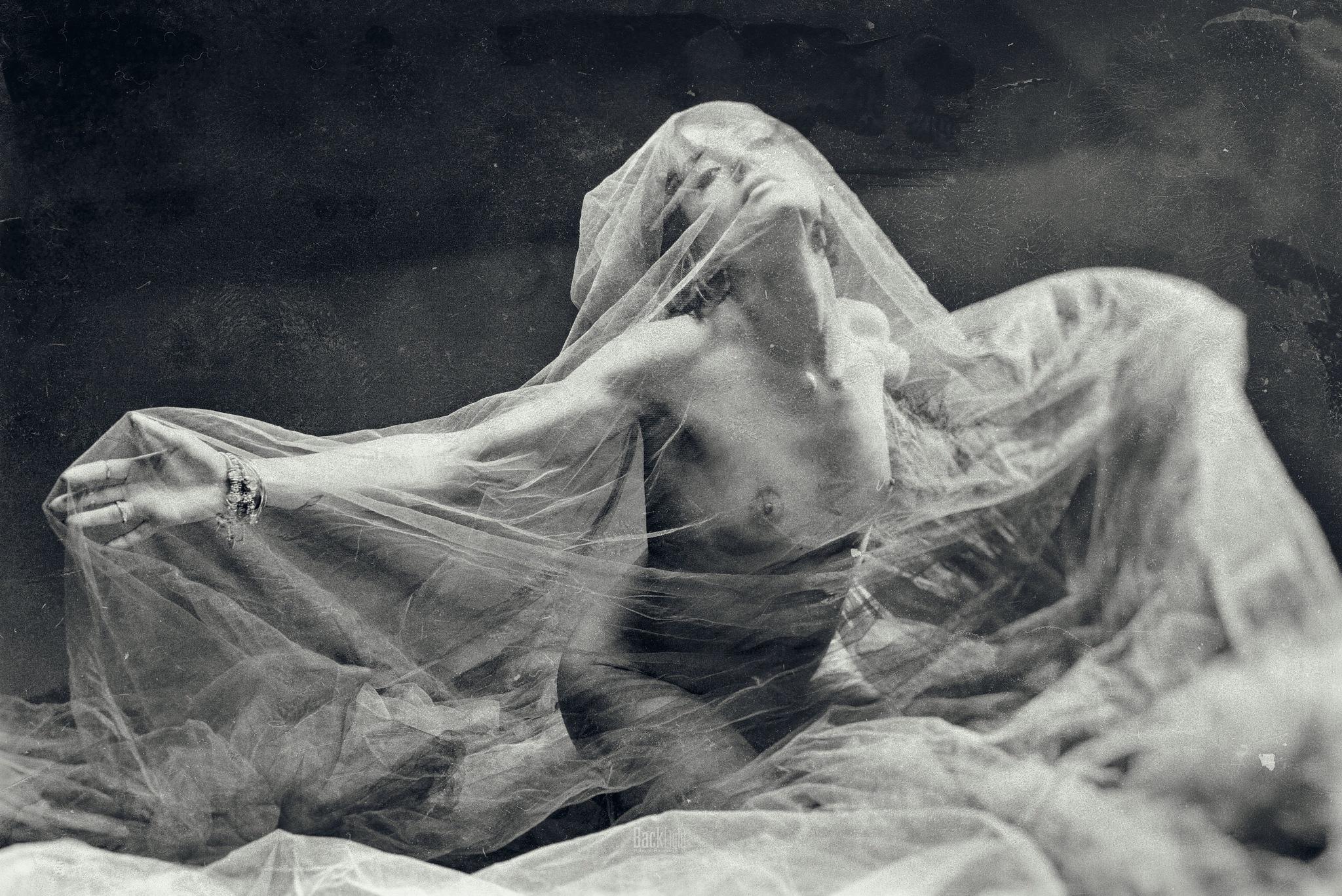Ary by Fabio Crimaldi