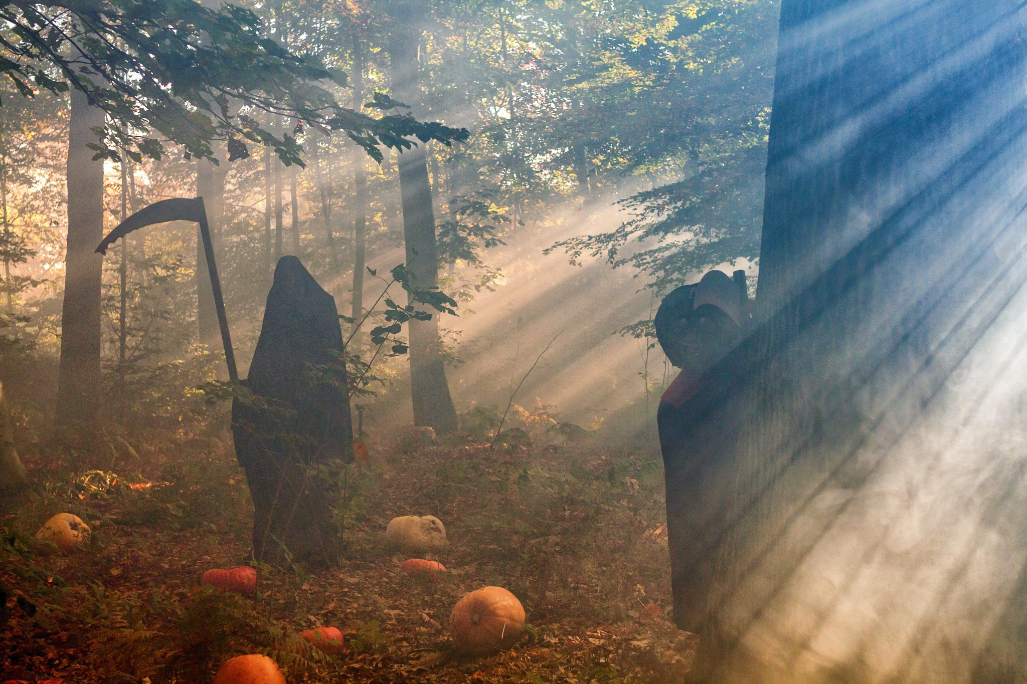 It's Halloween  by Fabrice Mouille