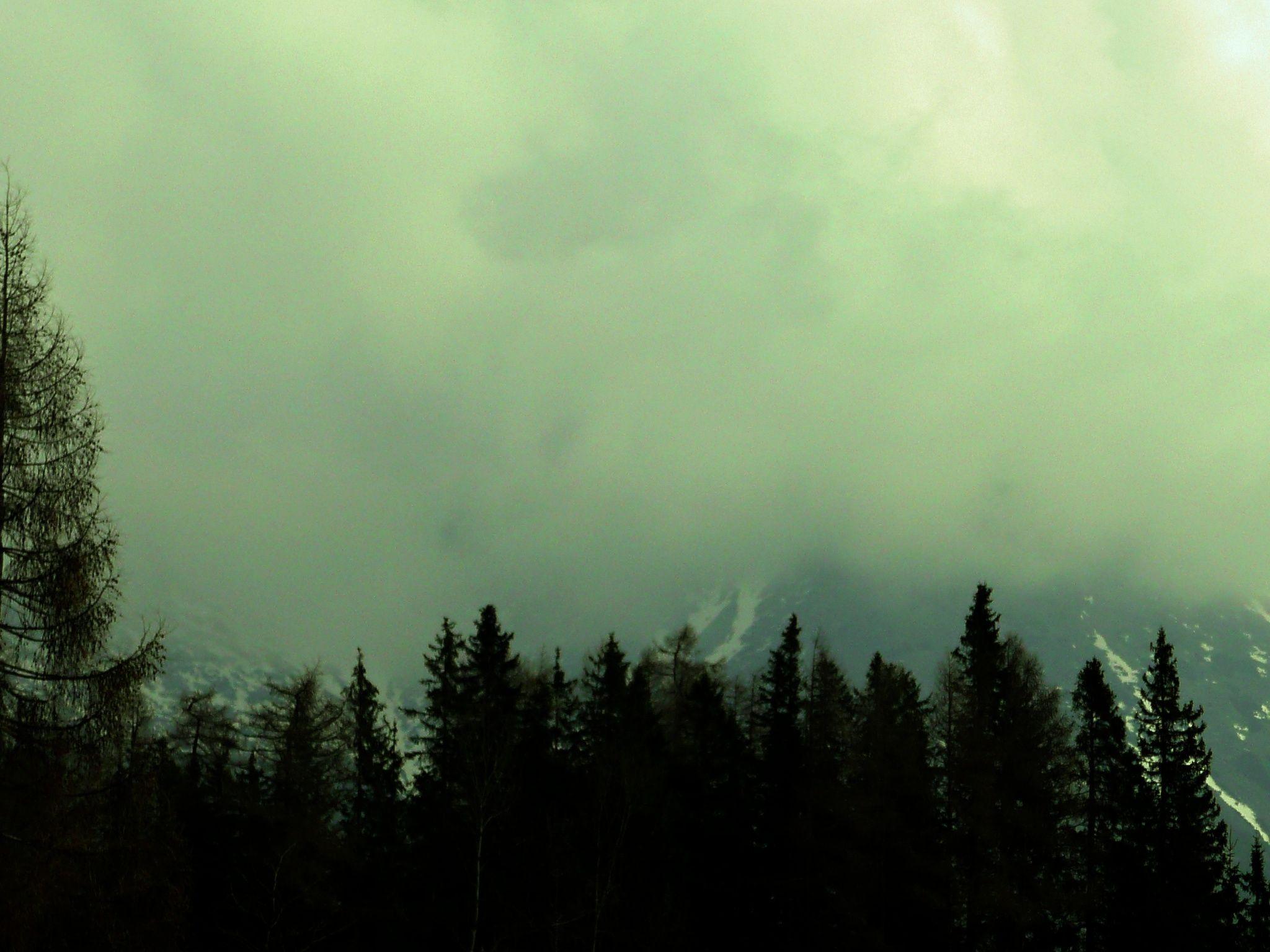 Mist ... by Liana Re