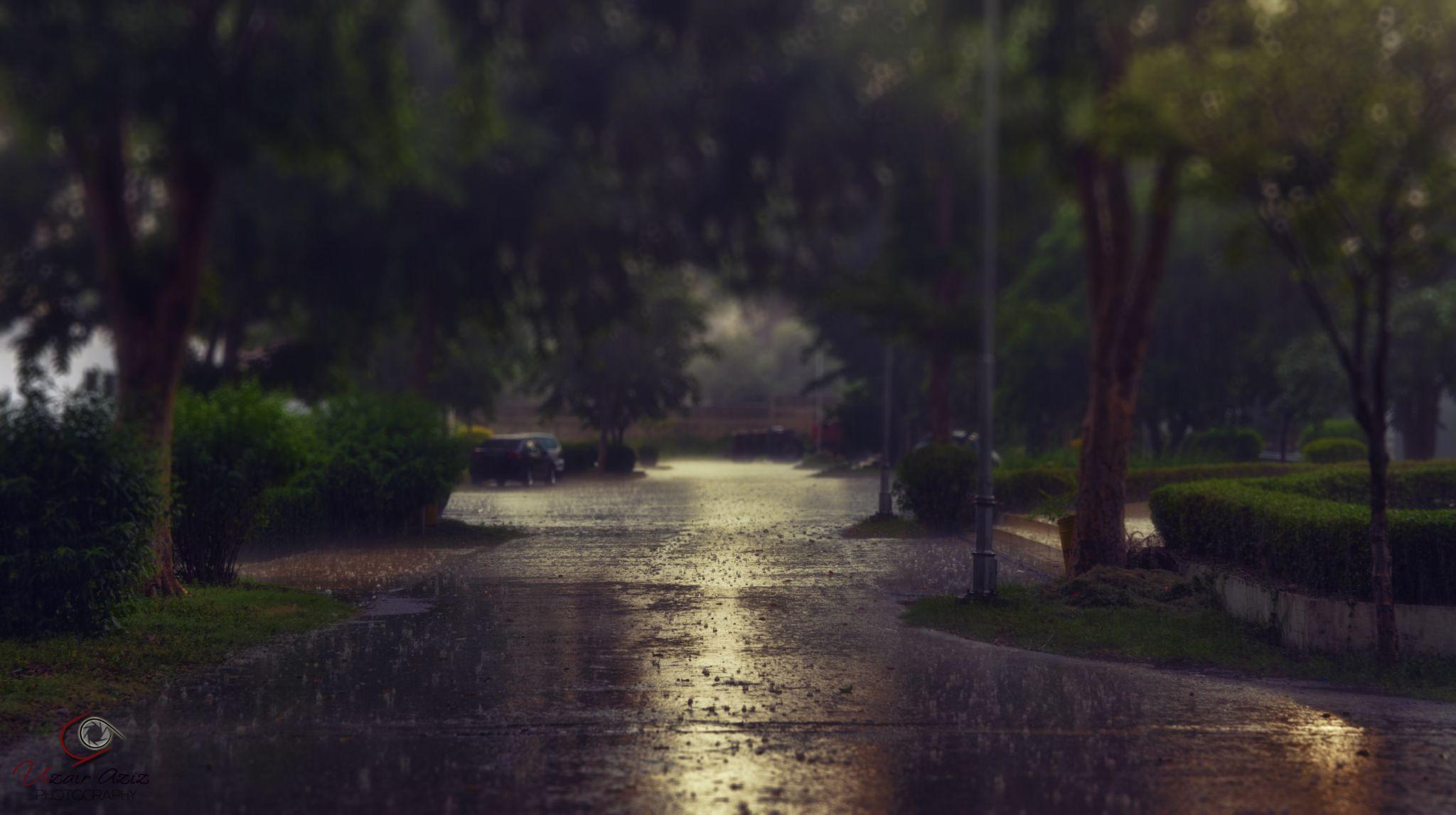 Rain by Uzair Aziz