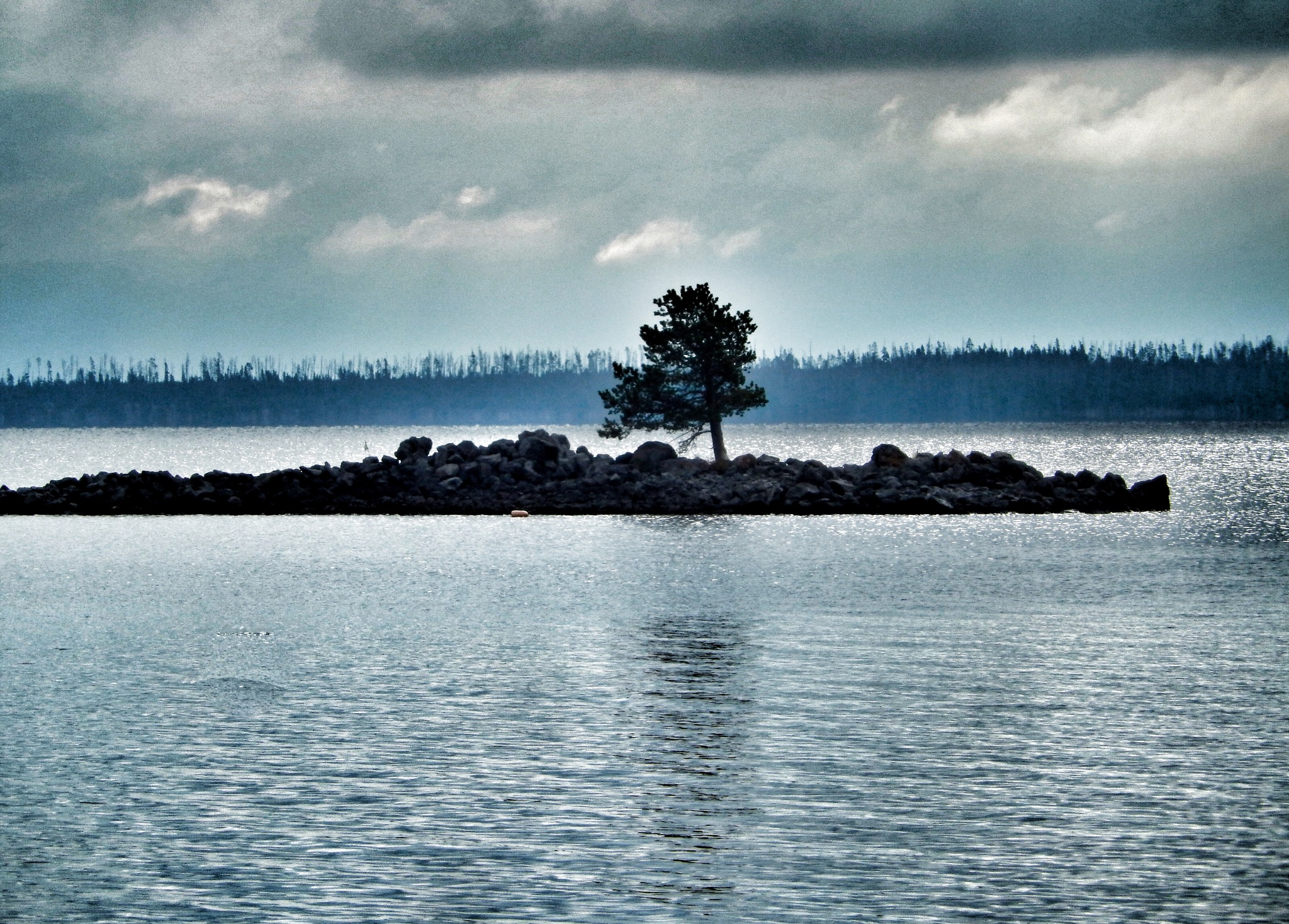 The lonesome tree (2) by Jackie06