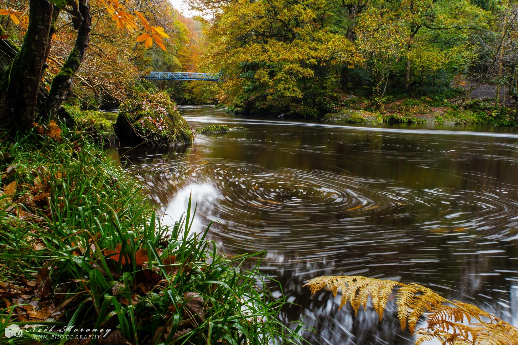 The Swirl. by Neil Moroney