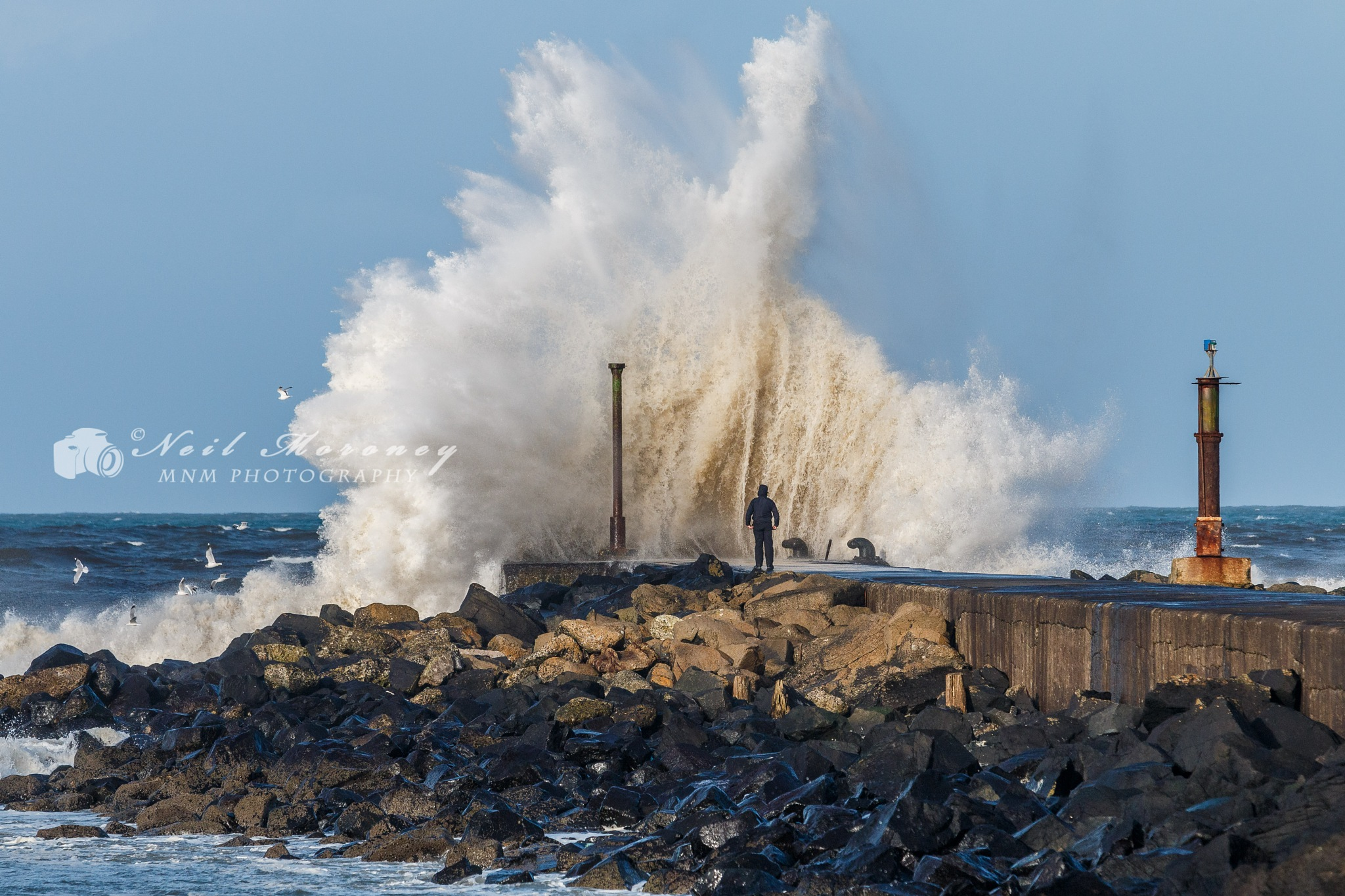 Wave Watcher by Neil Moroney