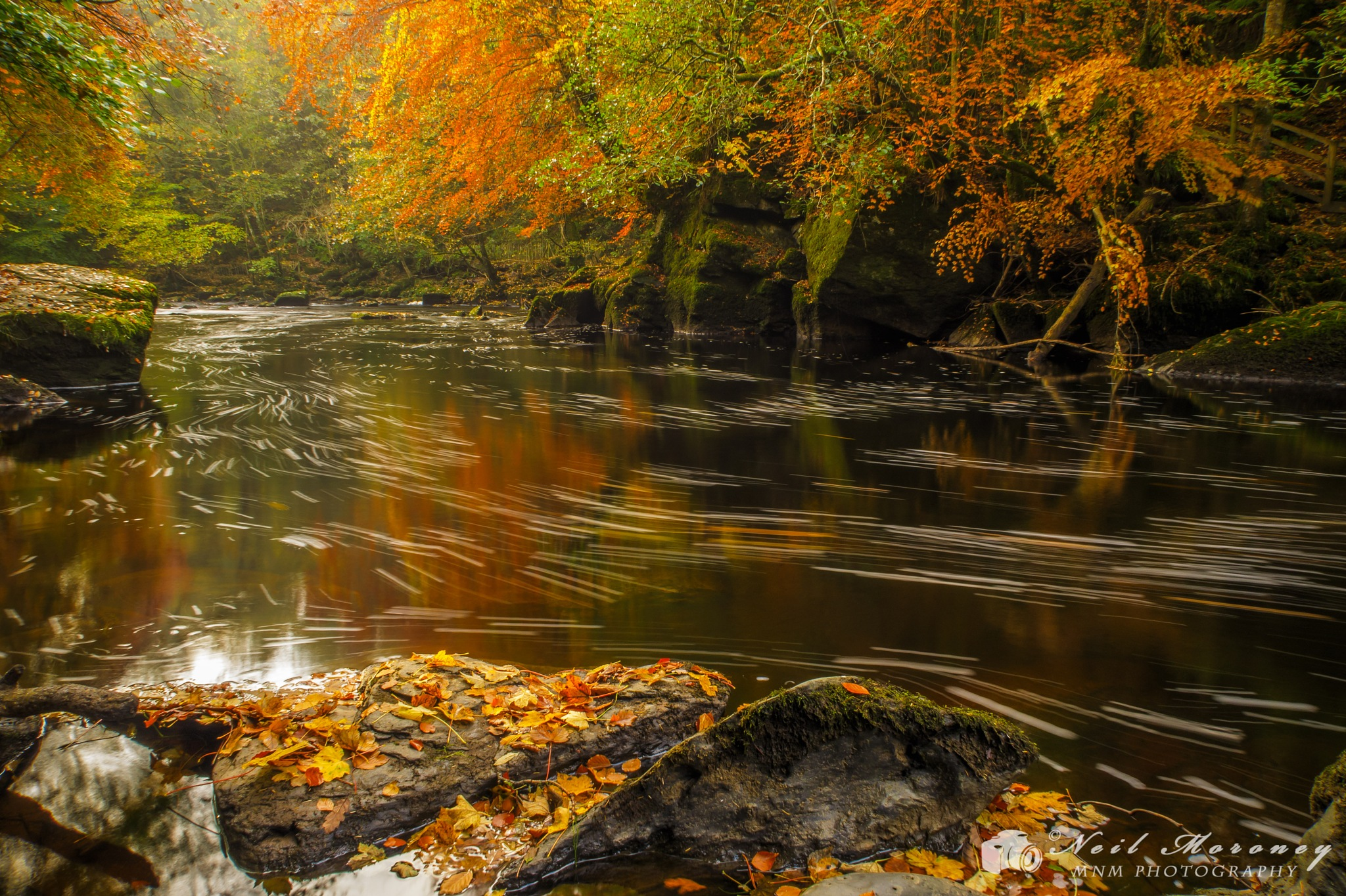 Autumnal Flow by Neil Moroney