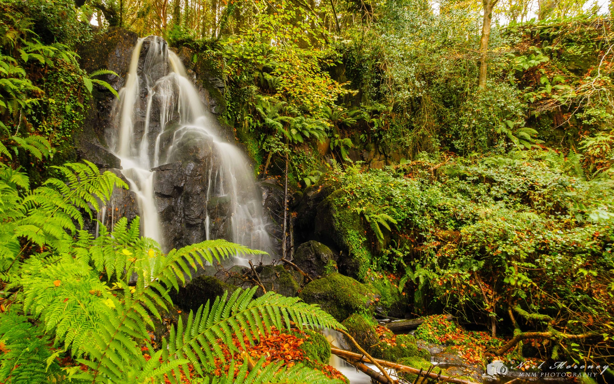 Karn Falls. by Neil Moroney