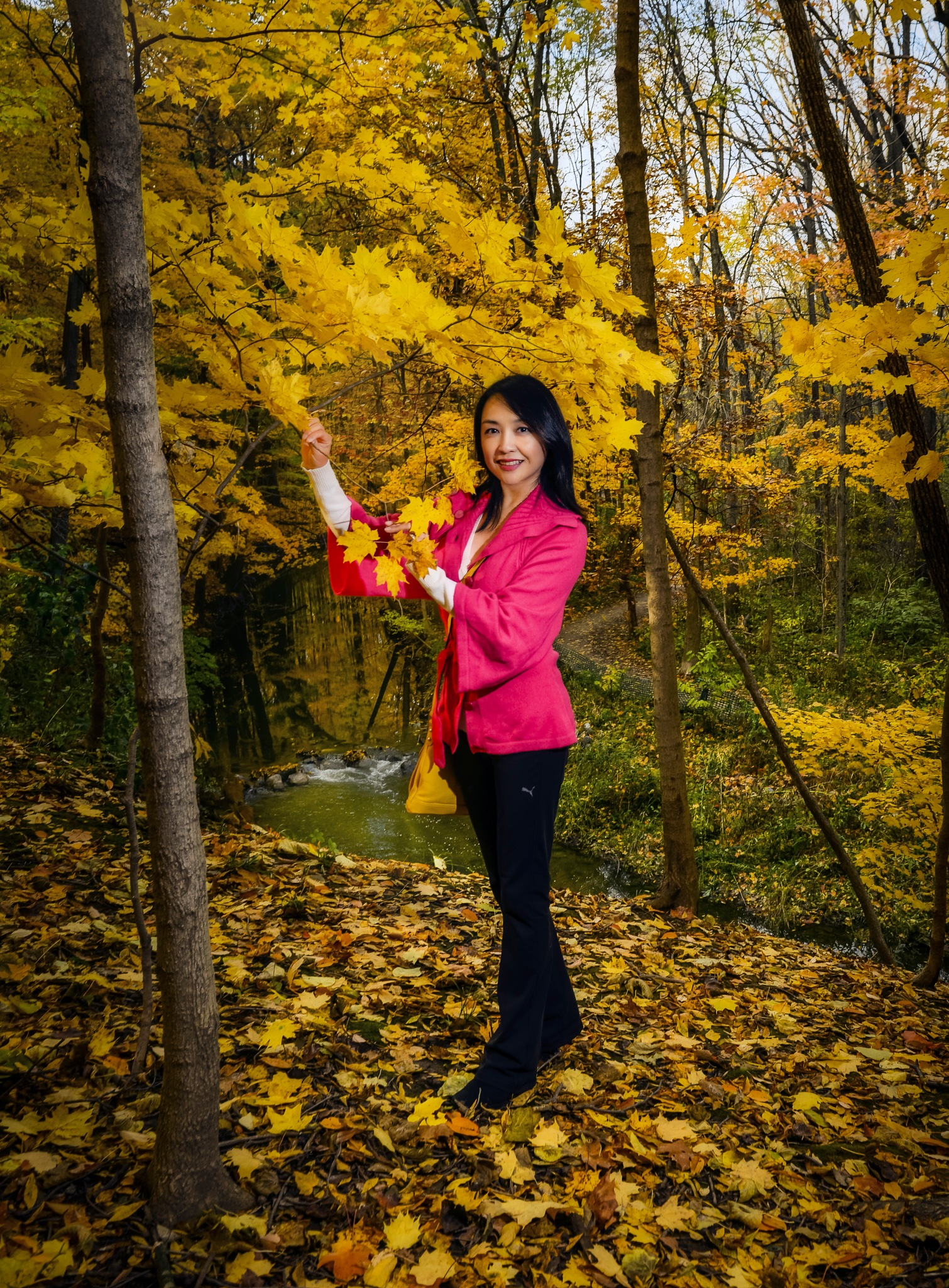 Last gasps of Fall Color by ribyt