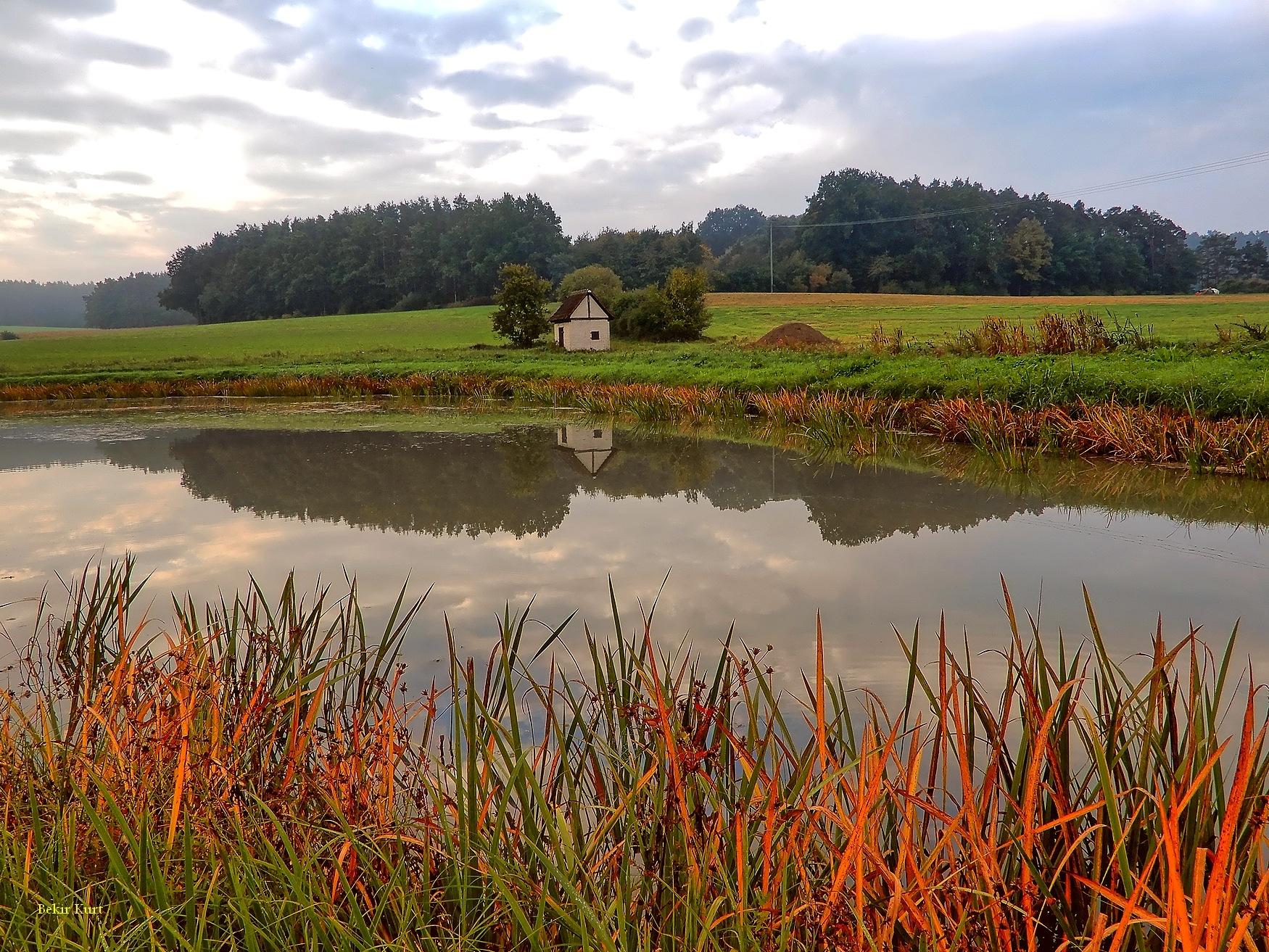 Pond Reflections (4) by Bekir Kurt