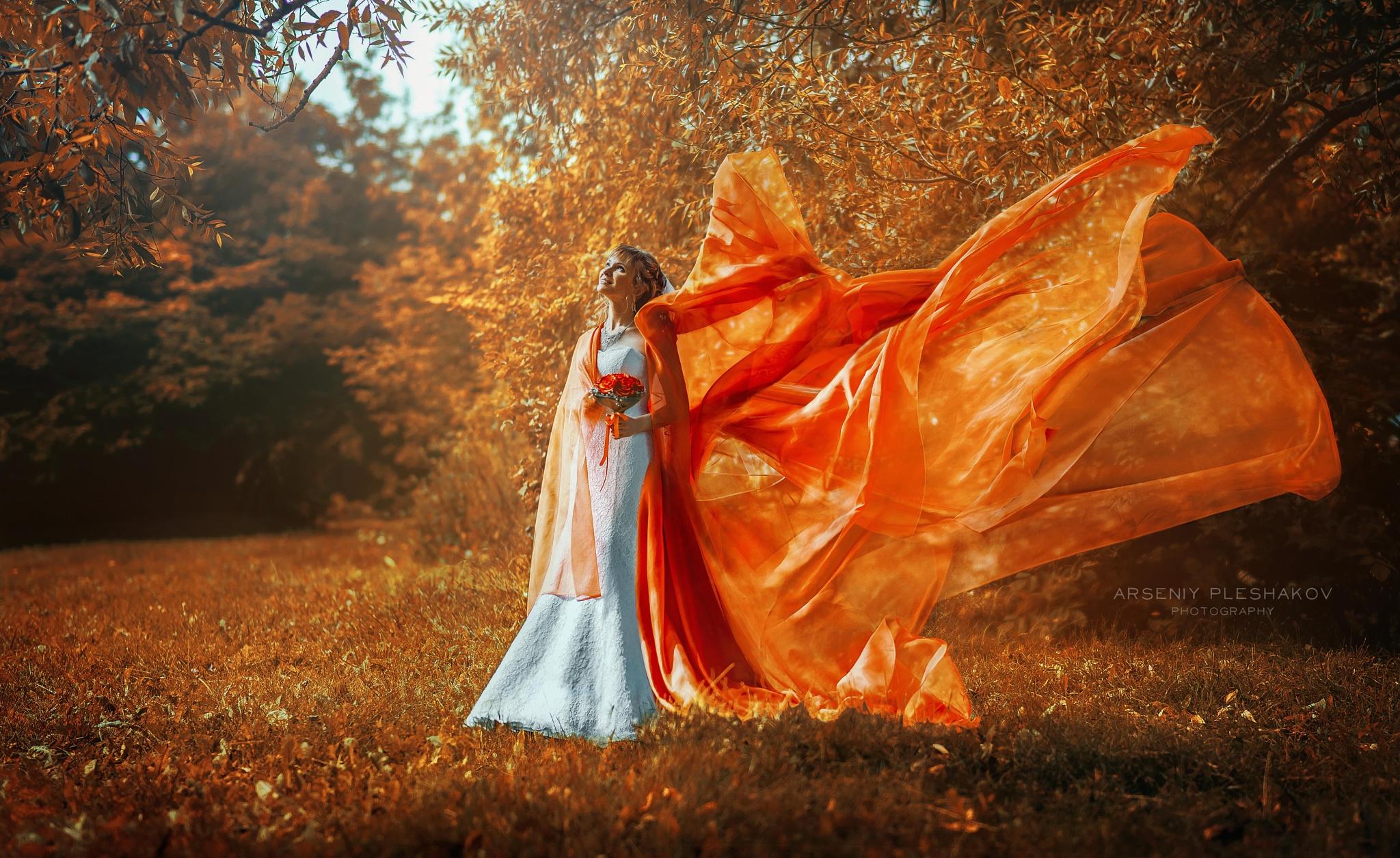butterfly  by Arseniy Pleshakov