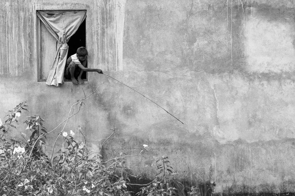 Backyard fishing by Sidhartha De
