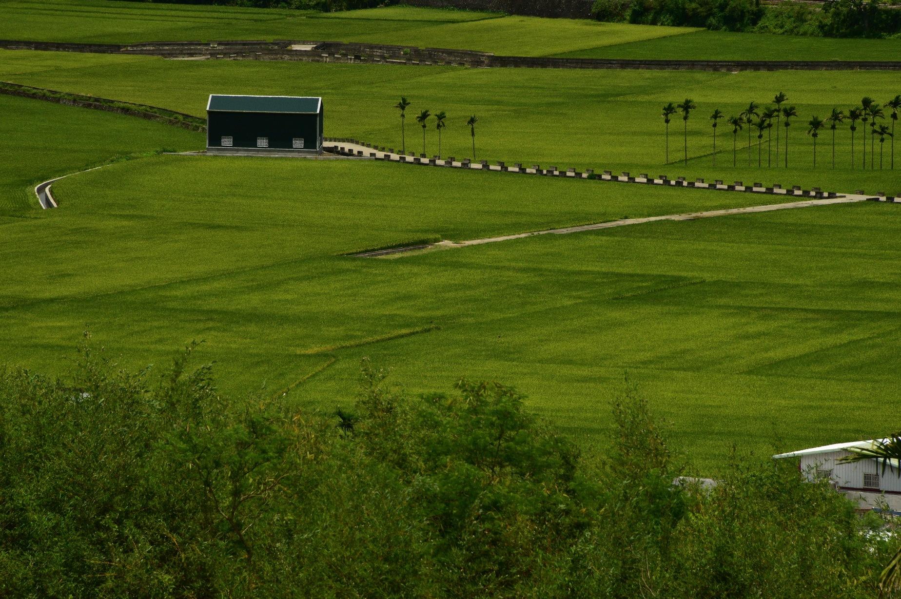 Rural landscape . by petertyghbn