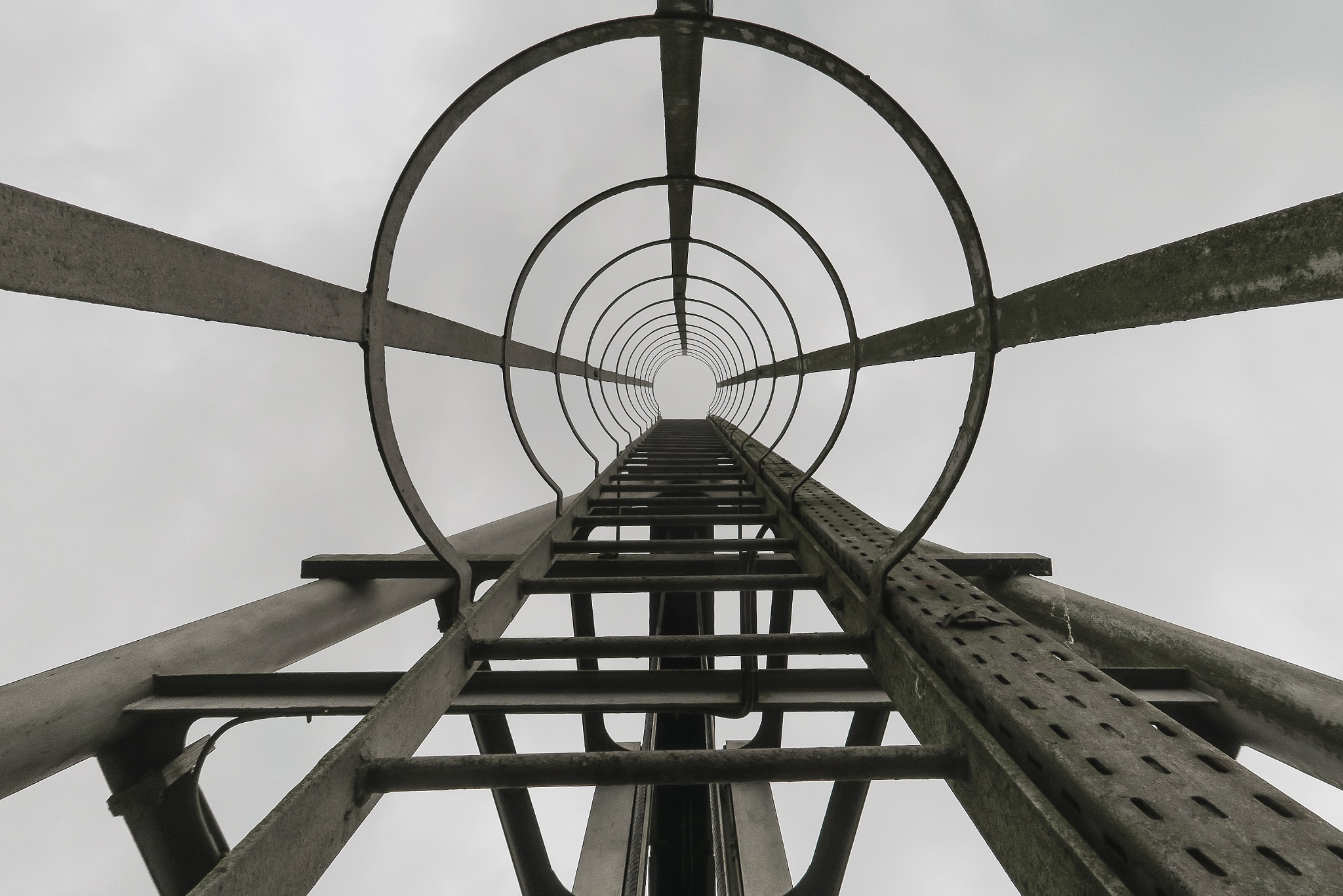 L'échelle by Cedric Jover