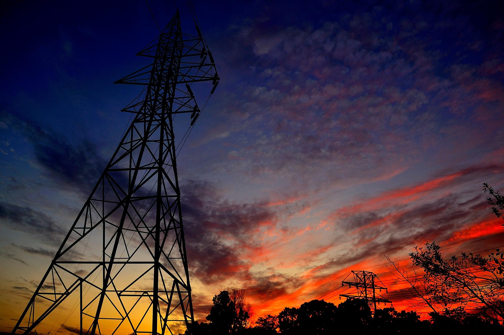 Under the sunset light.  by tamasergy