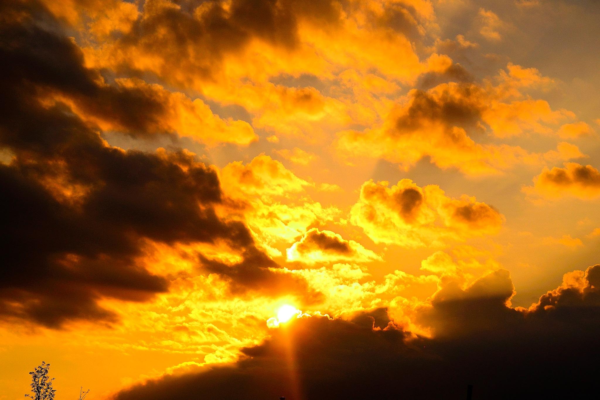 Sunlight  by tamasergy