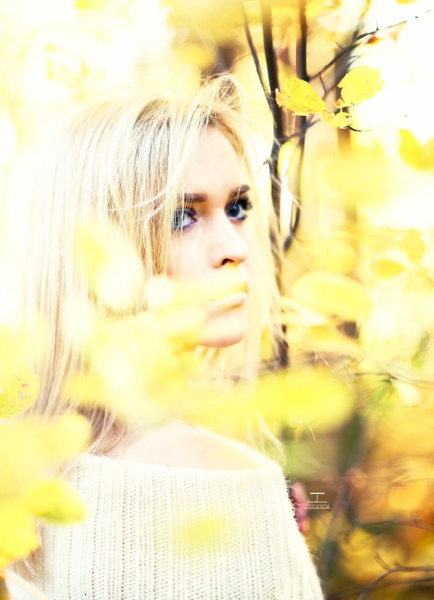 Autumn sunshine  by J*Photography