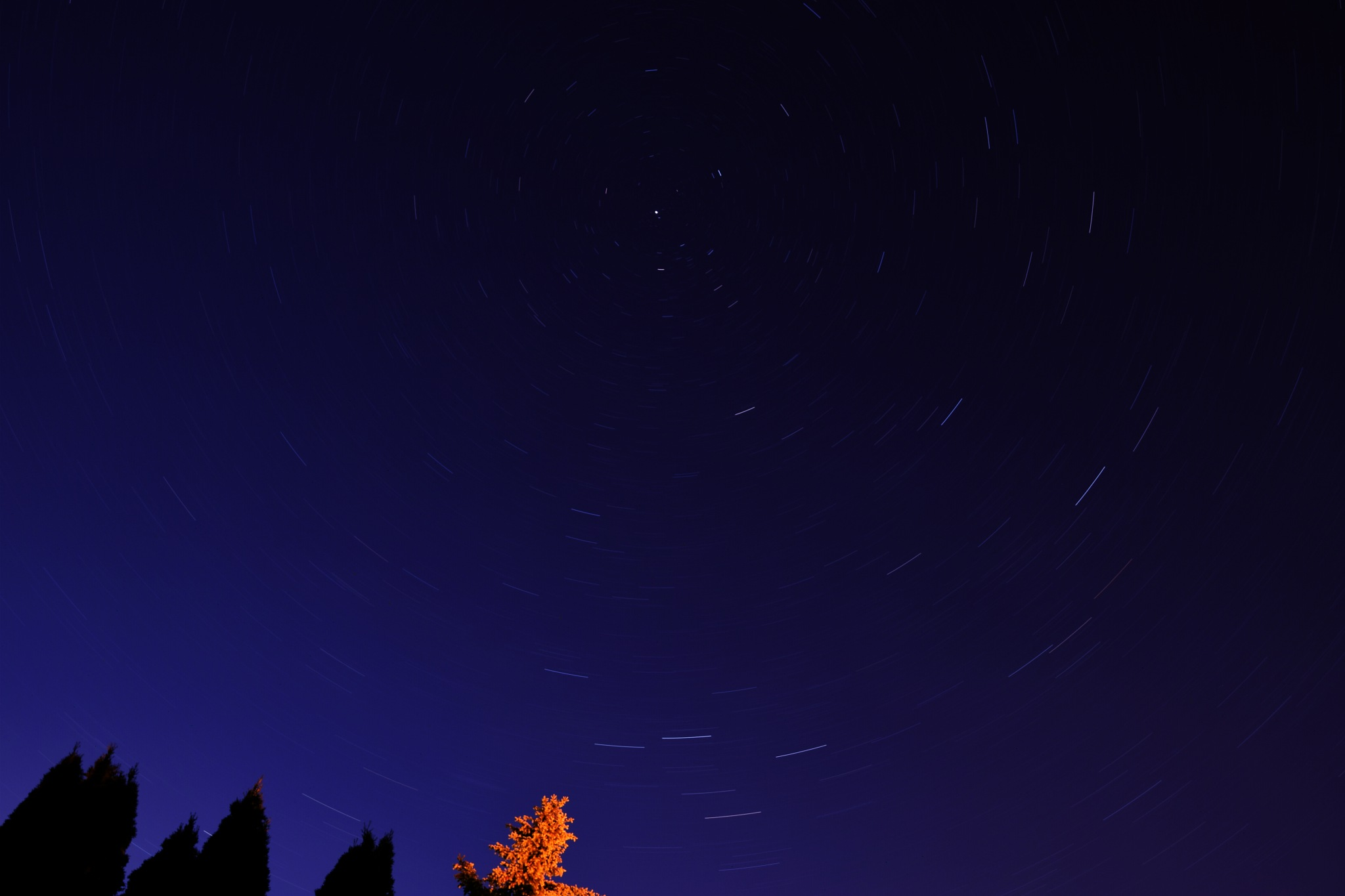 Polaris star surrounded by other stars. by Simon RD