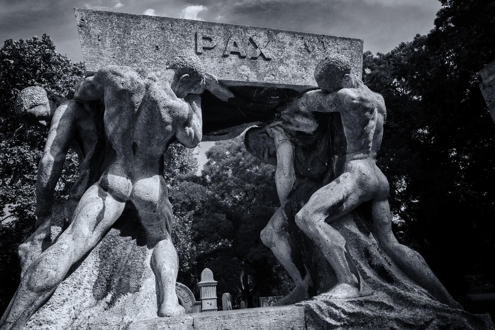 Pax by Attila Postas