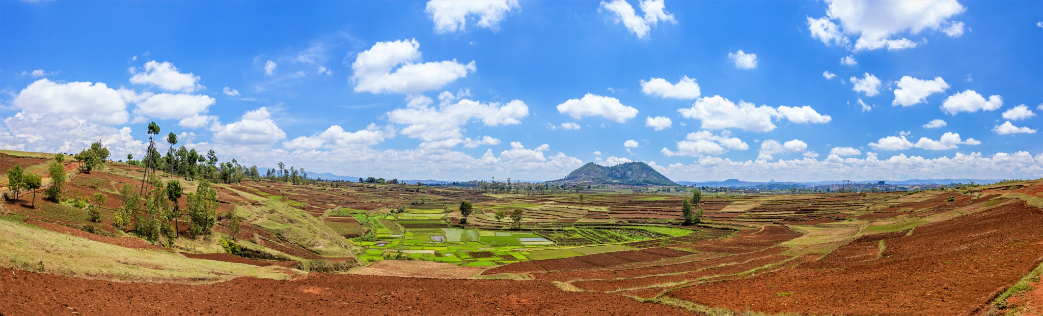 Paddy field, near Andsirabe, Madagascar by Nicolas F.