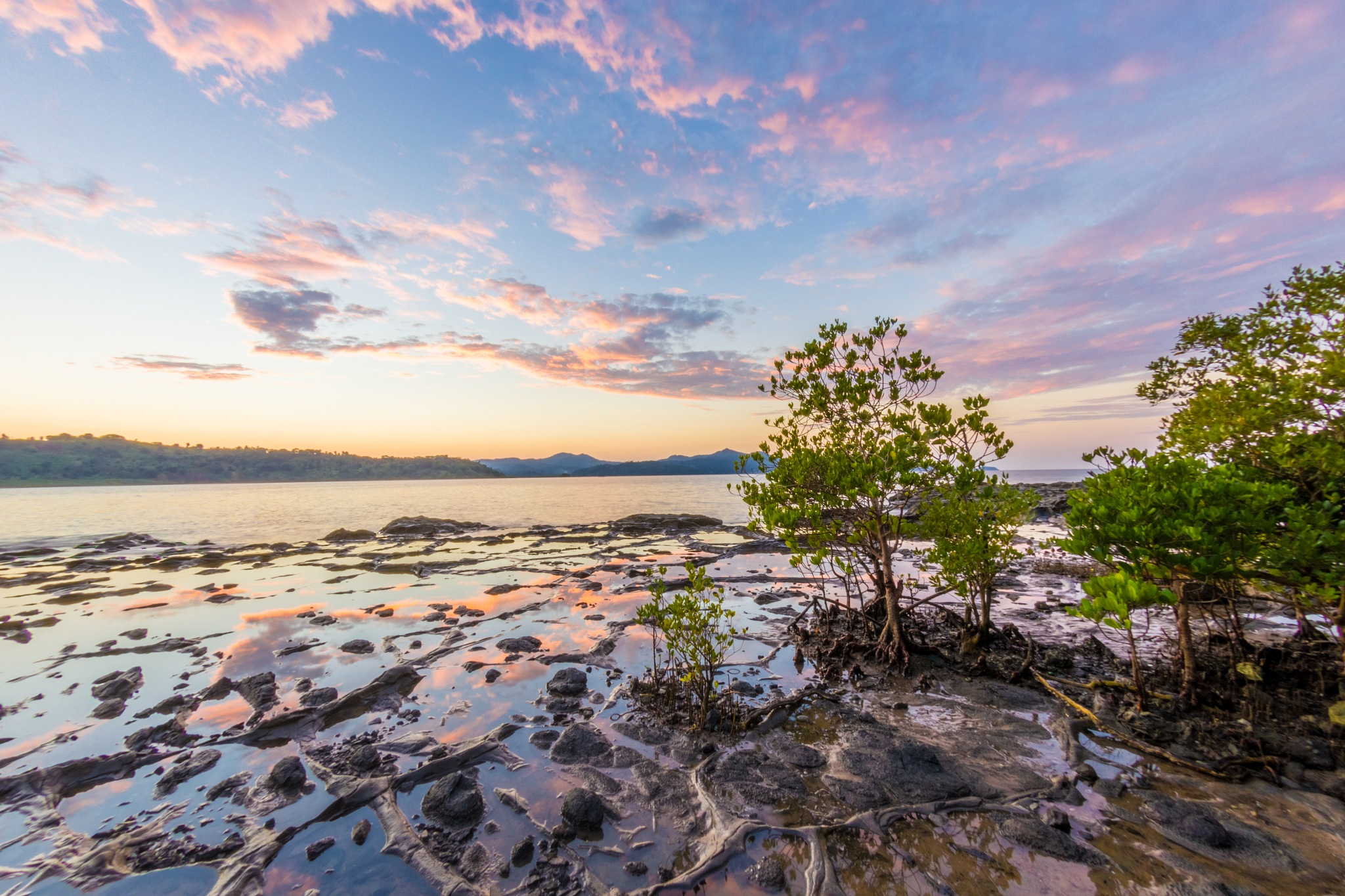 Sunset in Longoni's mangrove by Nicolas F.
