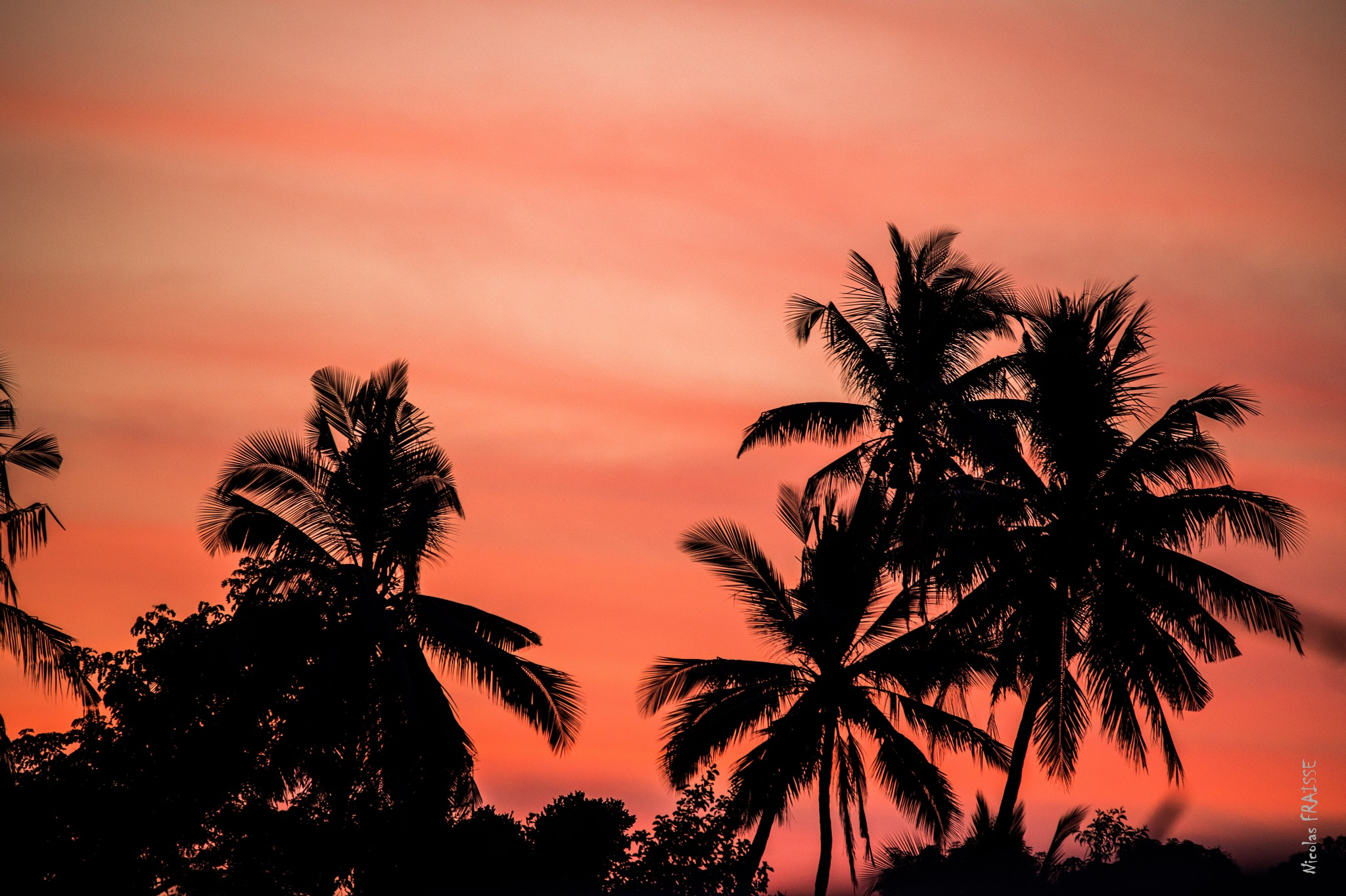Fire sunset by Nicolas F.