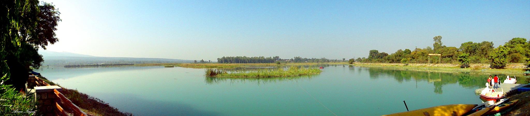Death of a Reservoir by Arun Nagar