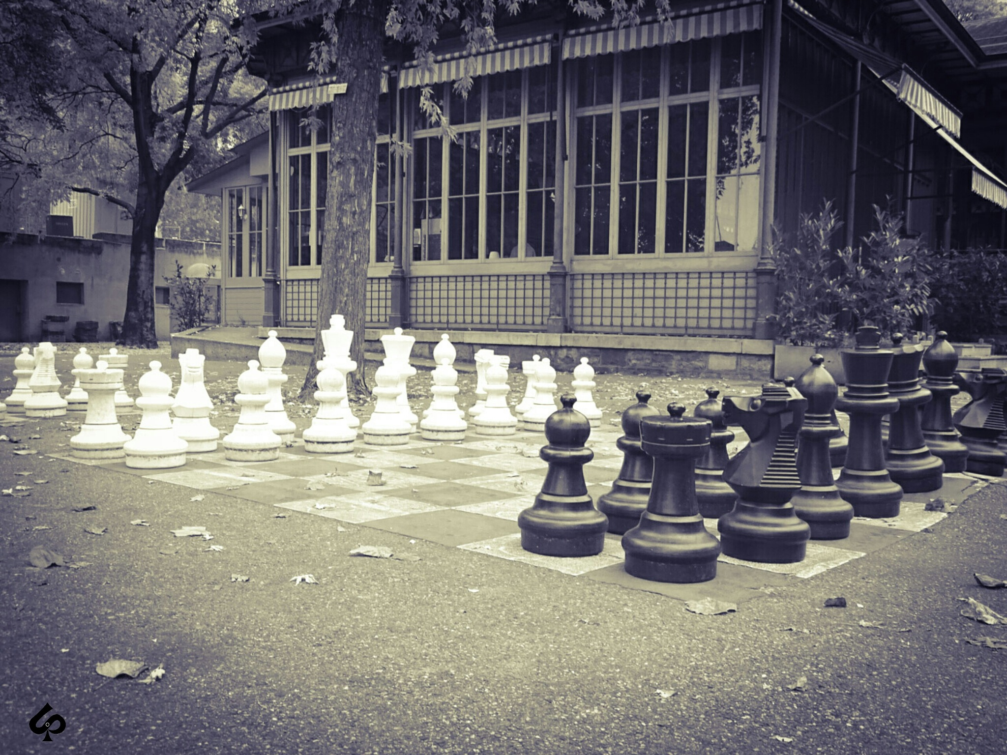 giant chess by Isa Bel