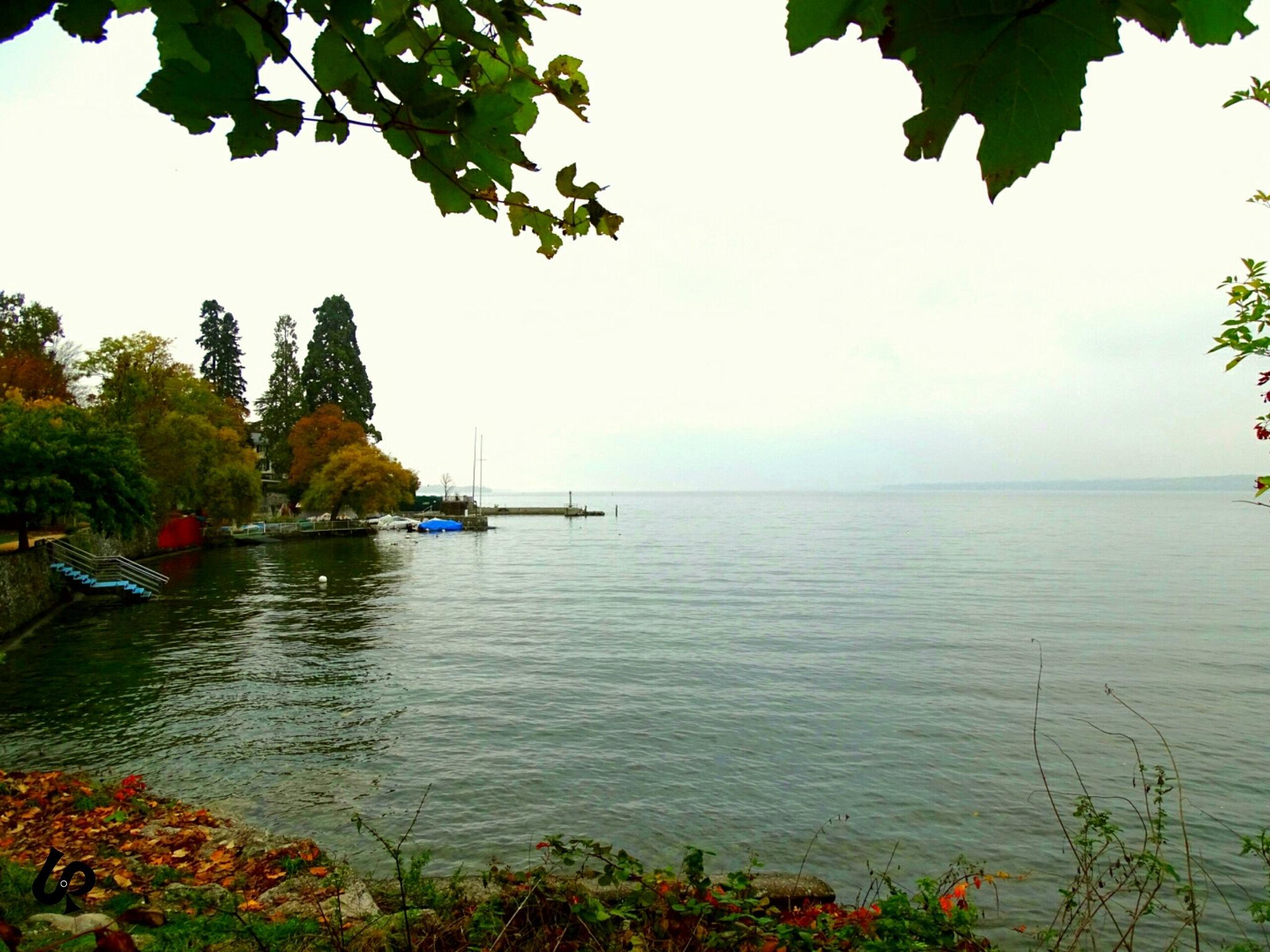 Lac Leman Geneva  by Isa Bel