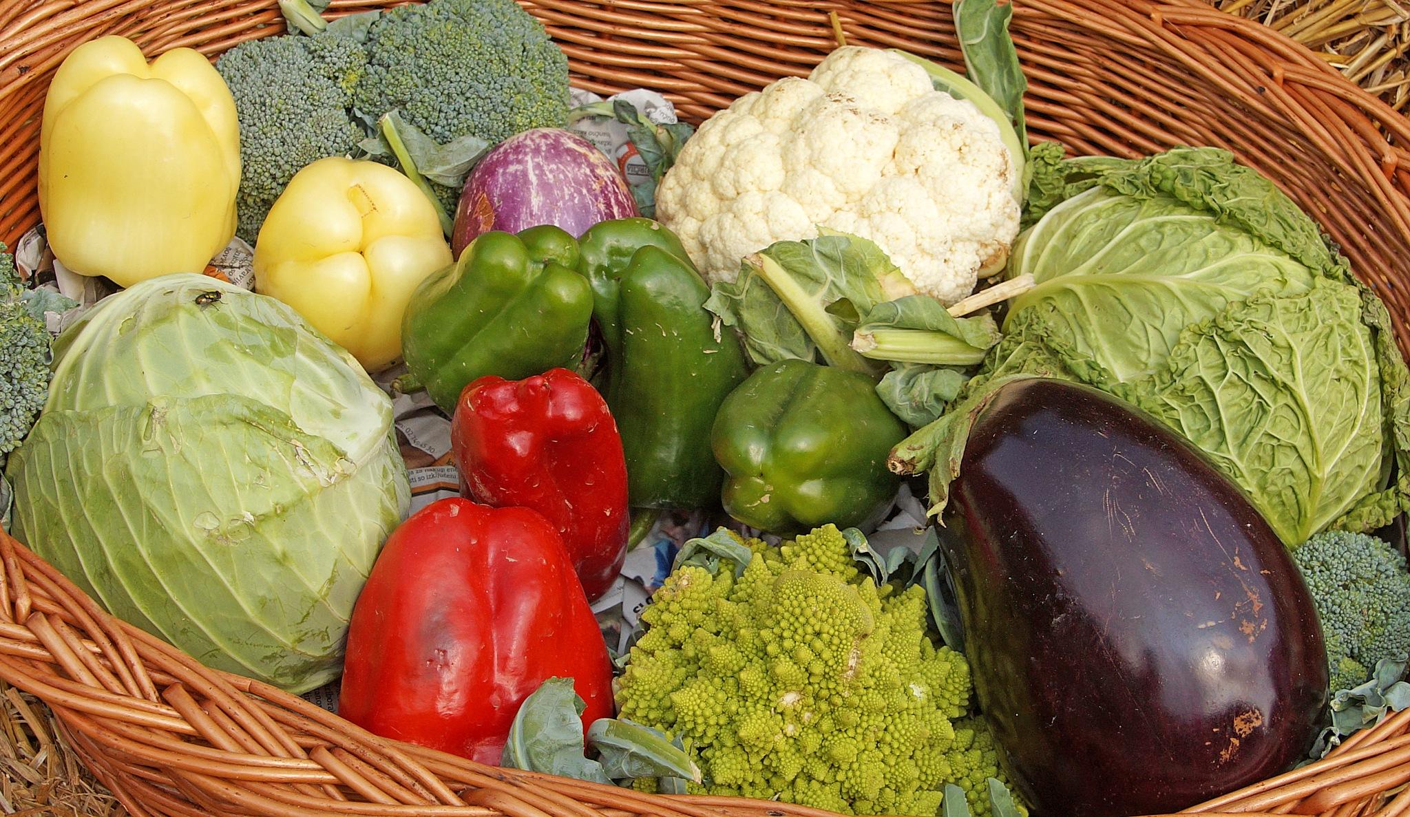 vegetables by darko1965
