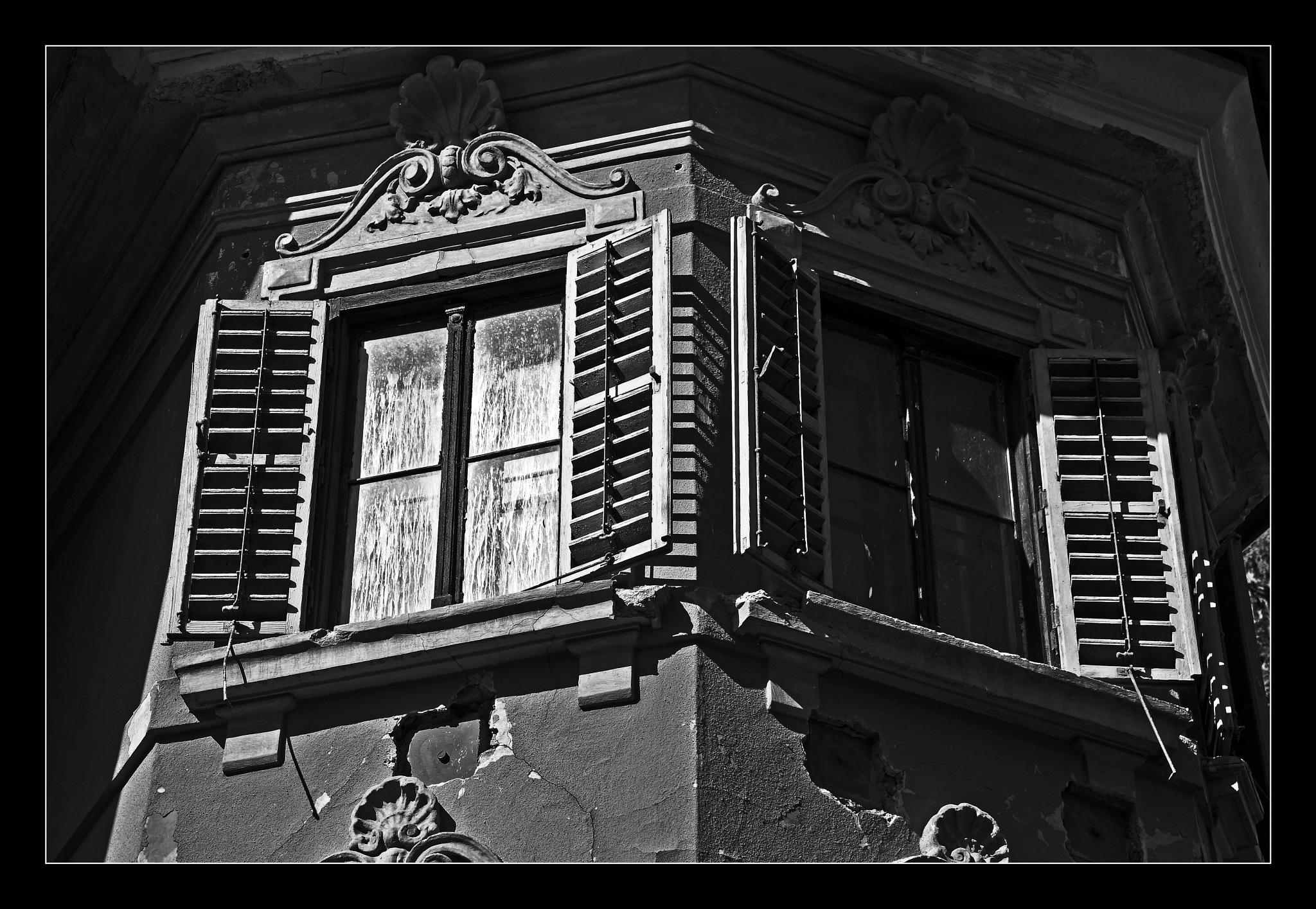 windows by darko1965