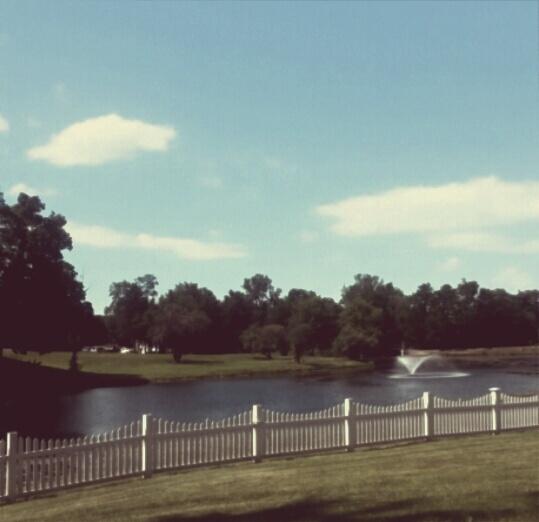 Little Pond by KaylinClark