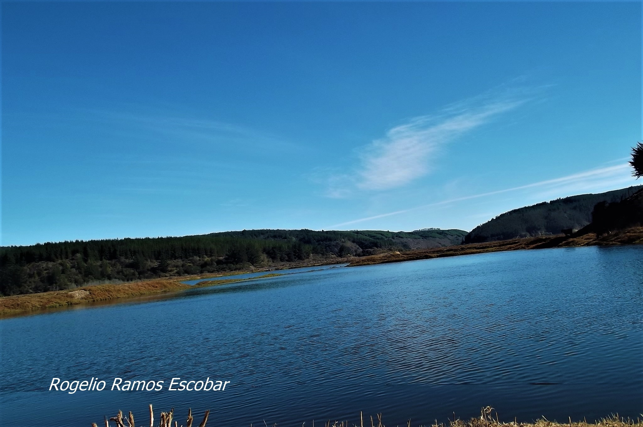 Disfrutemos la naturaleza by Rogelio Ramos Escobar
